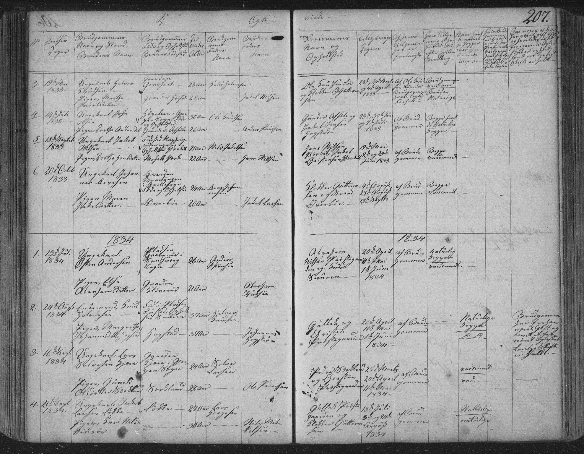 SAKO, Siljan kirkebøker, F/Fa/L0001: Parish register (official) no. 1, 1831-1870, p. 207
