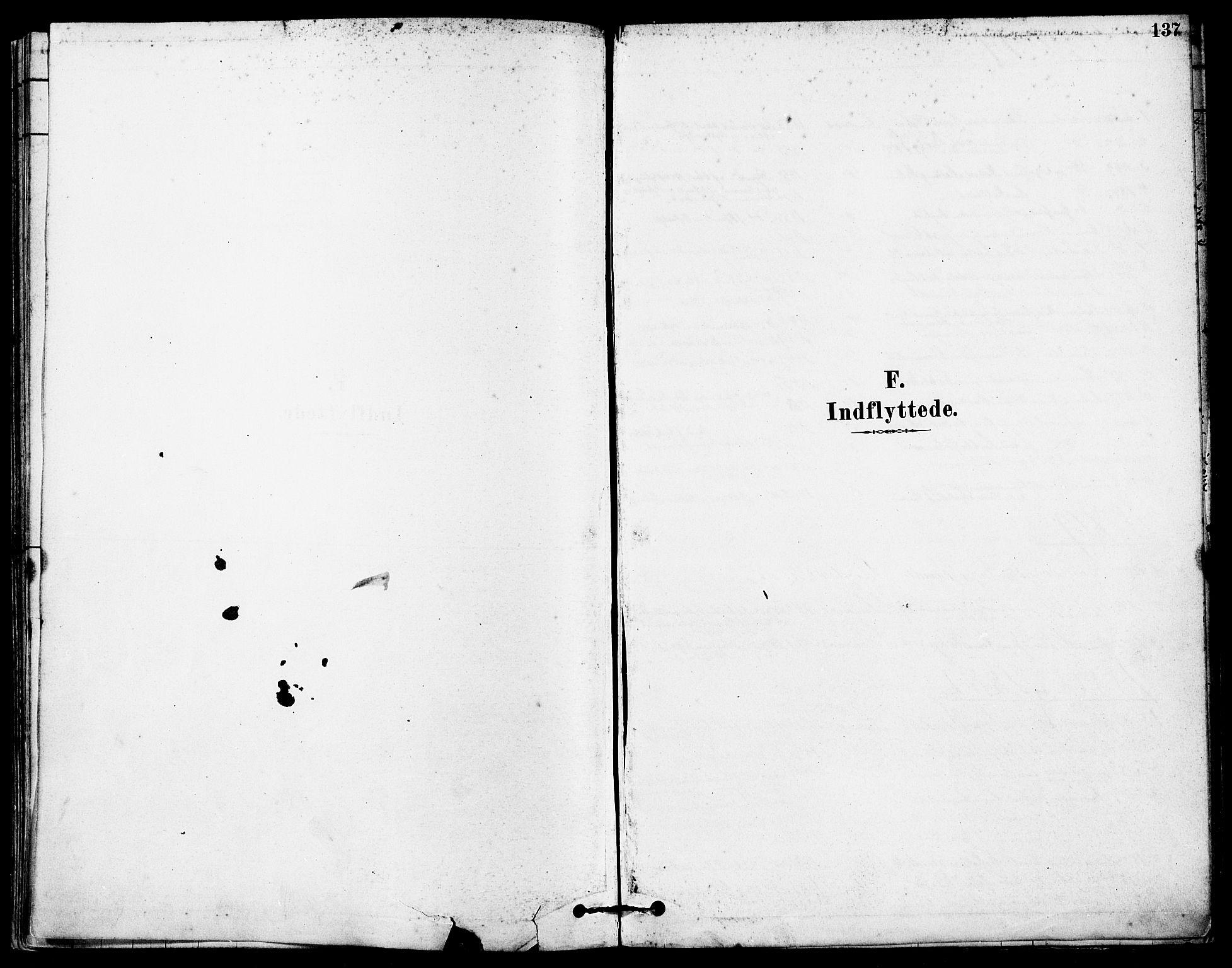 SAST, Høyland sokneprestkontor, 30BA/L0012: Parish register (official) no. A 11, 1878-1889, p. 137