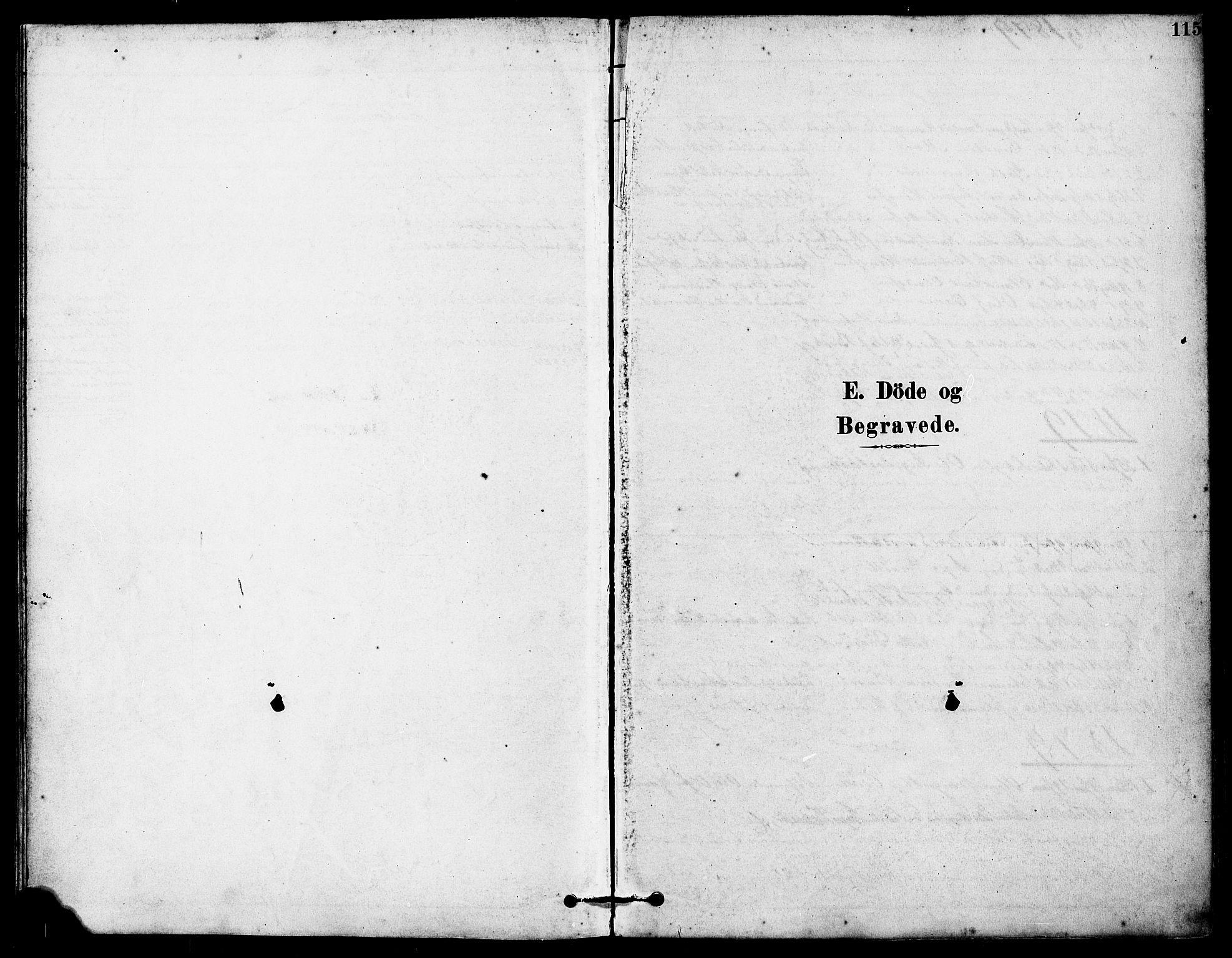 SAST, Høyland sokneprestkontor, 30BA/L0012: Parish register (official) no. A 11, 1878-1889, p. 115