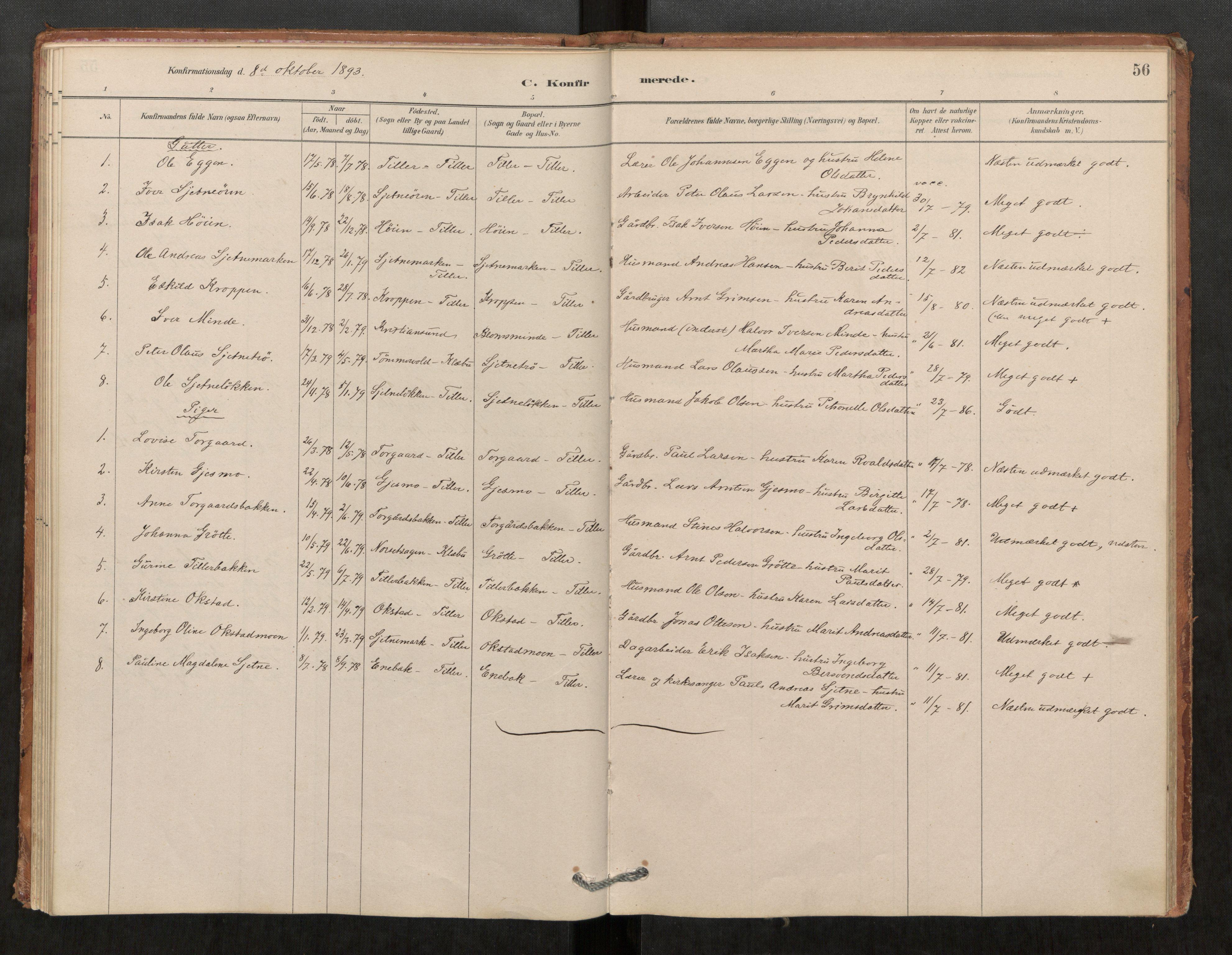 SAT, Klæbu sokneprestkontor, Parish register (official) no. 1, 1880-1900, p. 56