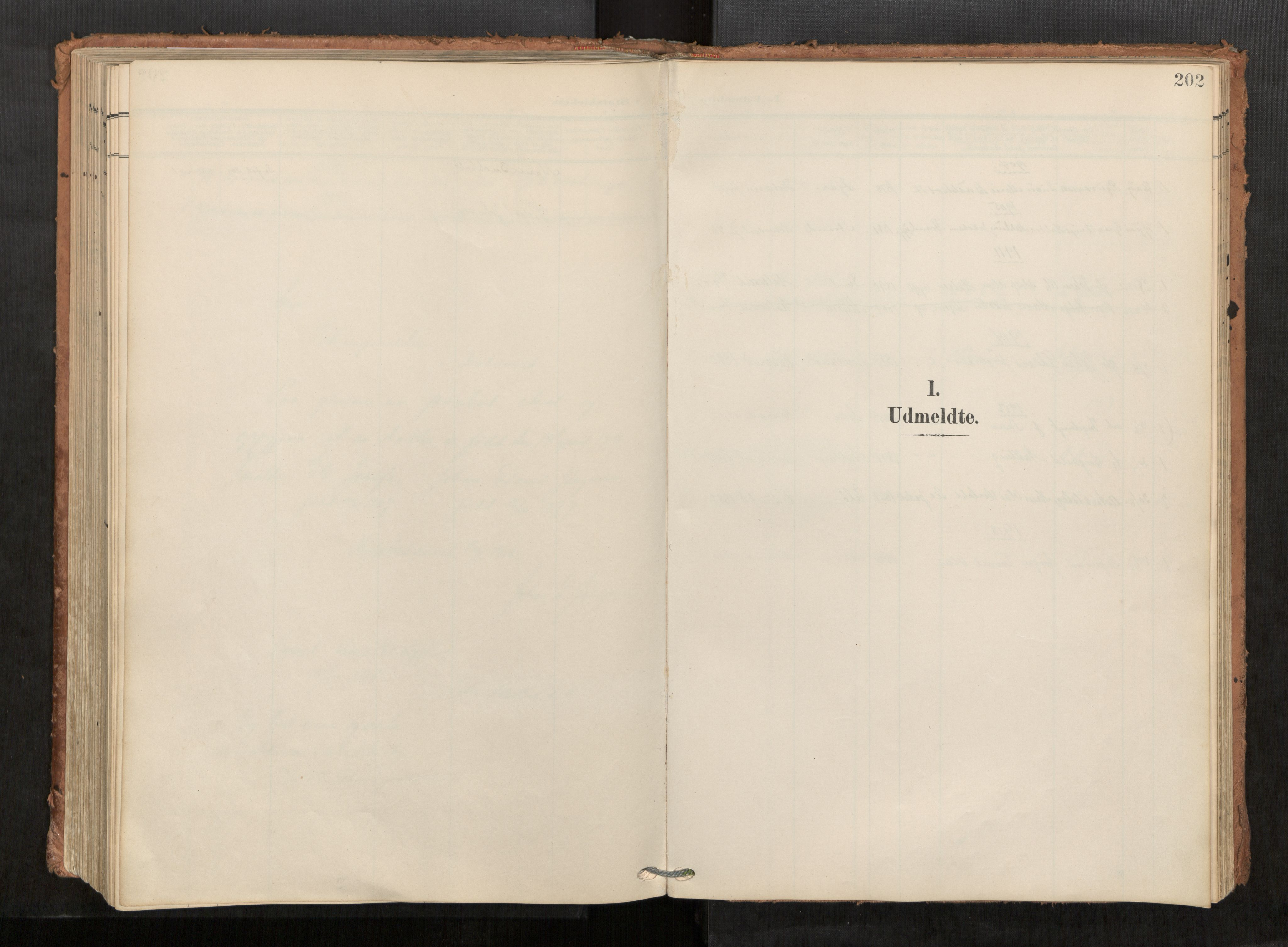 SAT, Kolvereid sokneprestkontor, H/Ha/Haa/L0001: Parish register (official) no. 1, 1903-1922, p. 202