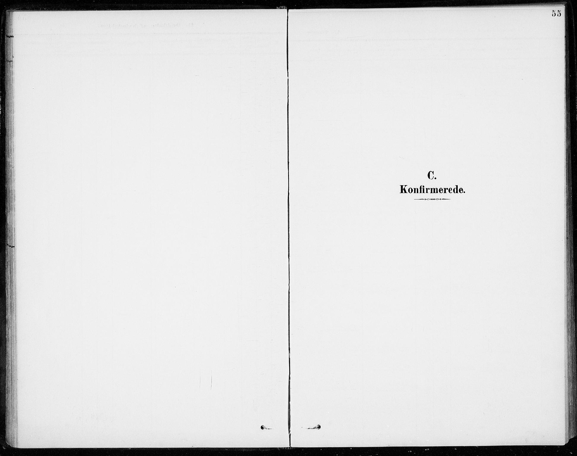 SAKO, Sigdal kirkebøker, F/Fc/L0002: Parish register (official) no. III 2, 1894-1911, p. 55