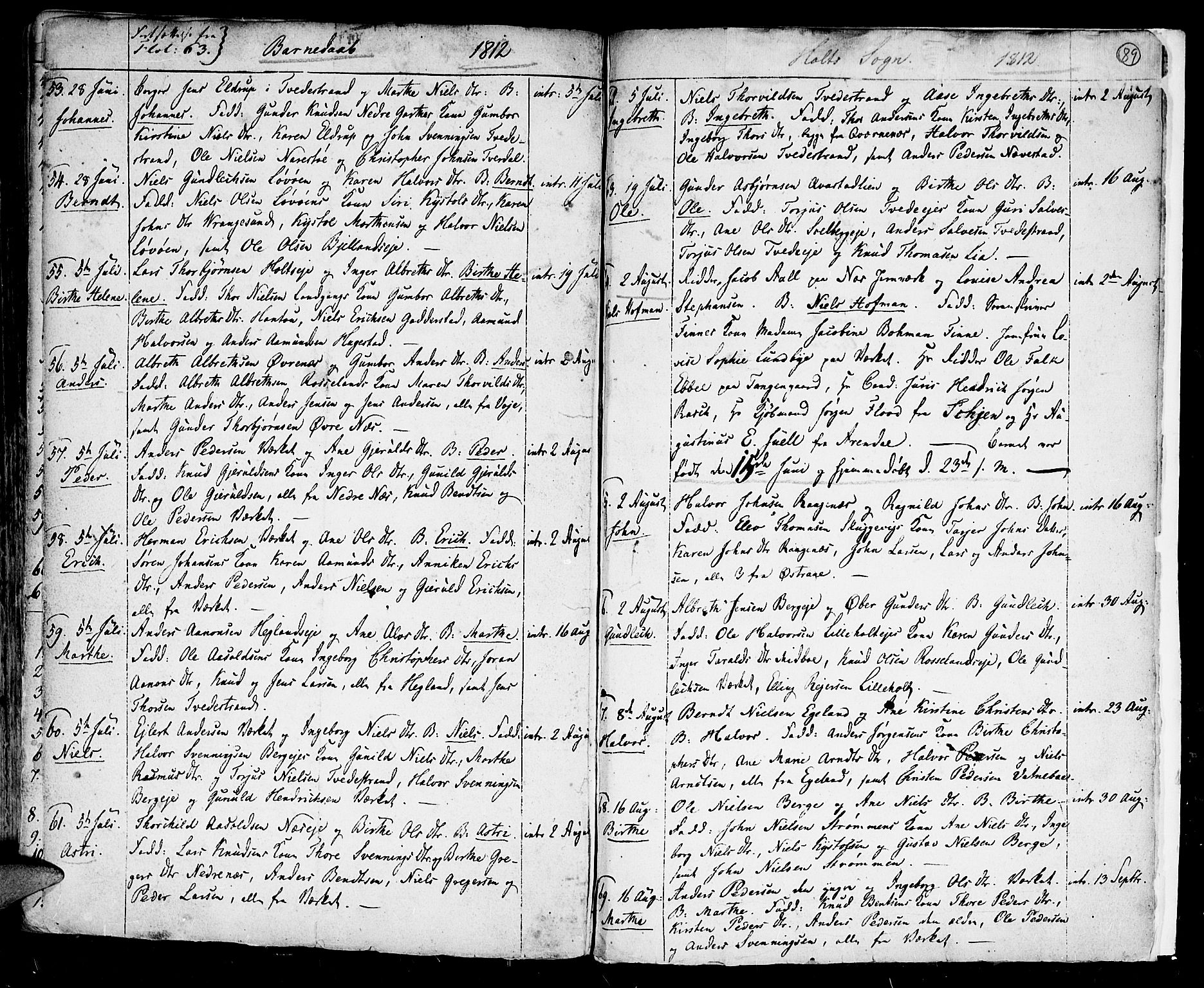 SAK, Holt sokneprestkontor, F/Fa/L0004: Parish register (official) no. A 4, 1799-1813, p. 89