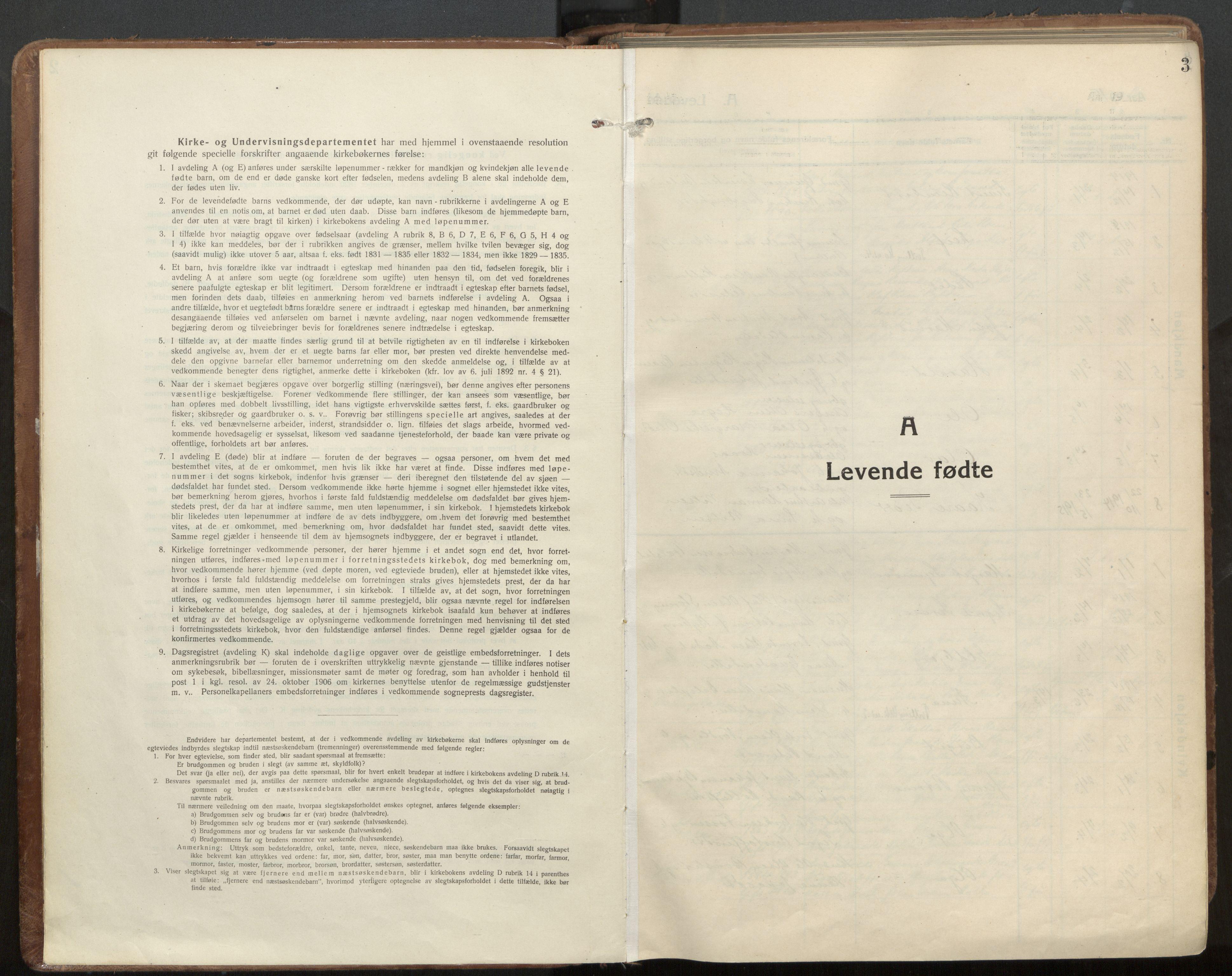 SAT, Ministerialprotokoller, klokkerbøker og fødselsregistre - Nord-Trøndelag, 703/L0037: Parish register (official) no. 703A10, 1915-1932, p. 3