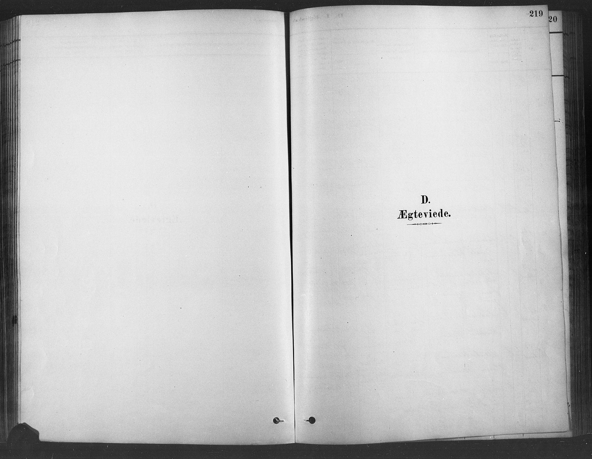 SAH, Fåberg prestekontor, H/Ha/Haa/L0009: Parish register (official) no. 9, 1879-1898, p. 219