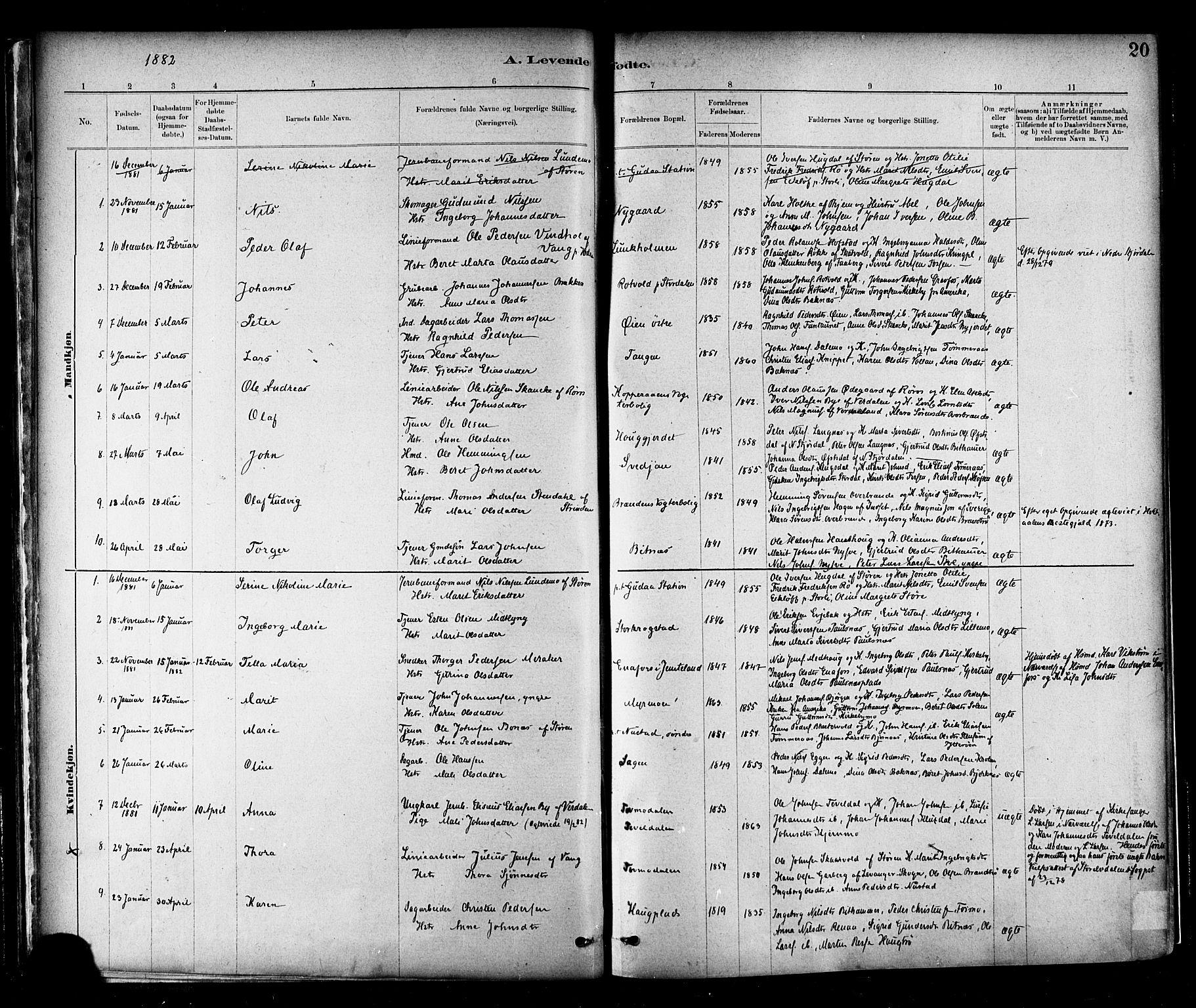 SAT, Ministerialprotokoller, klokkerbøker og fødselsregistre - Nord-Trøndelag, 706/L0047: Parish register (official) no. 706A03, 1878-1892, p. 20