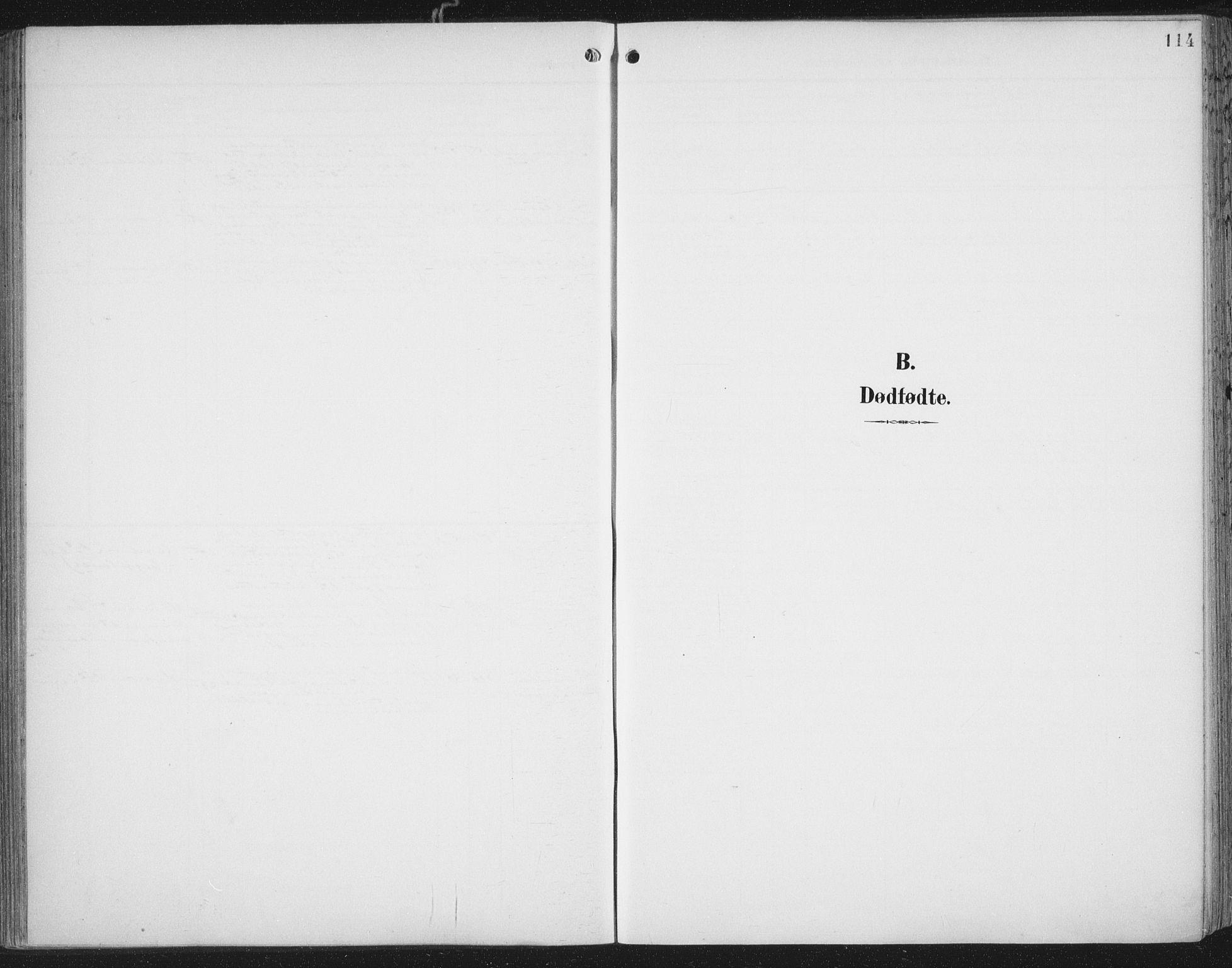 SAT, Ministerialprotokoller, klokkerbøker og fødselsregistre - Nord-Trøndelag, 701/L0011: Parish register (official) no. 701A11, 1899-1915, p. 114