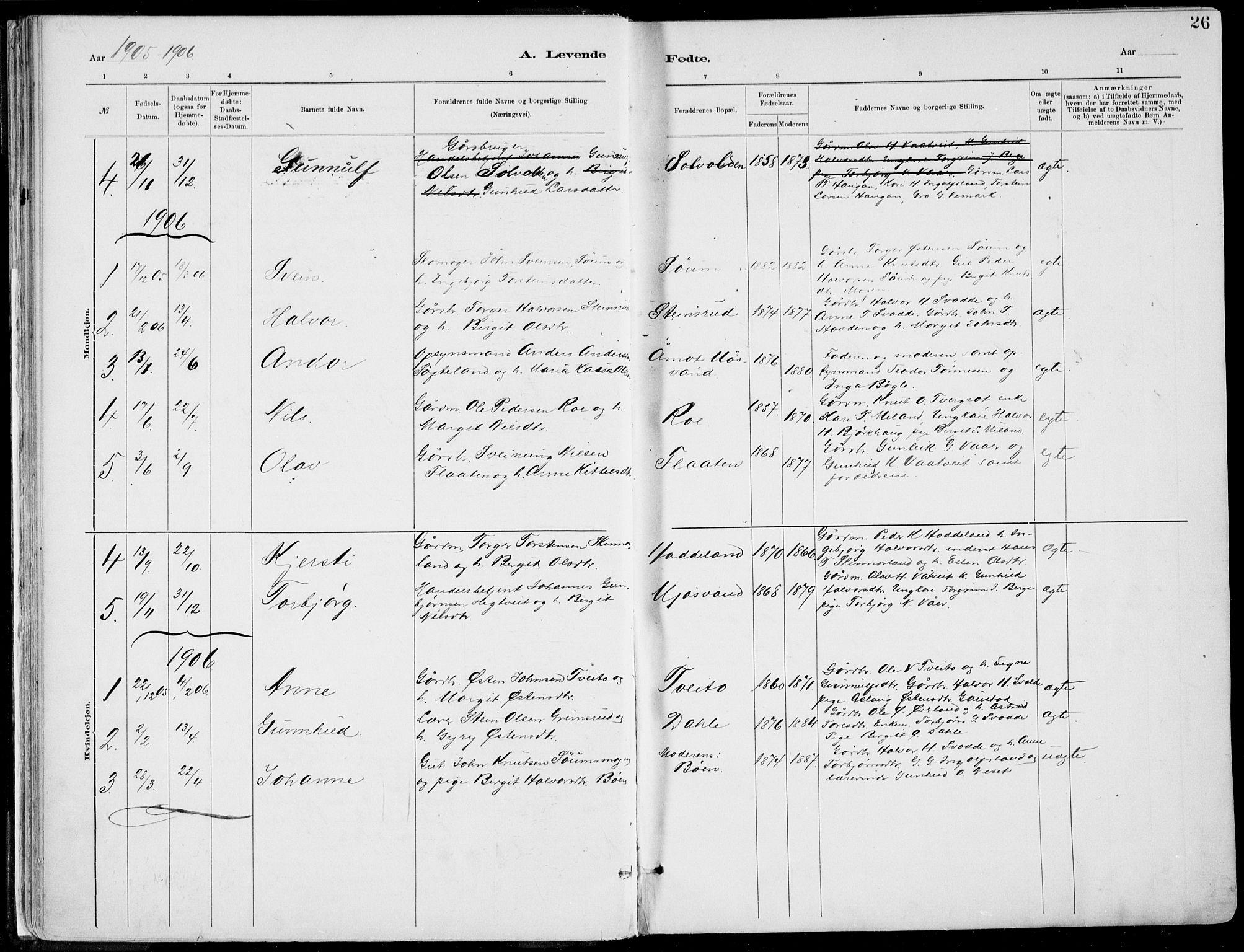 SAKO, Rjukan kirkebøker, F/Fa/L0001: Parish register (official) no. 1, 1878-1912, p. 26