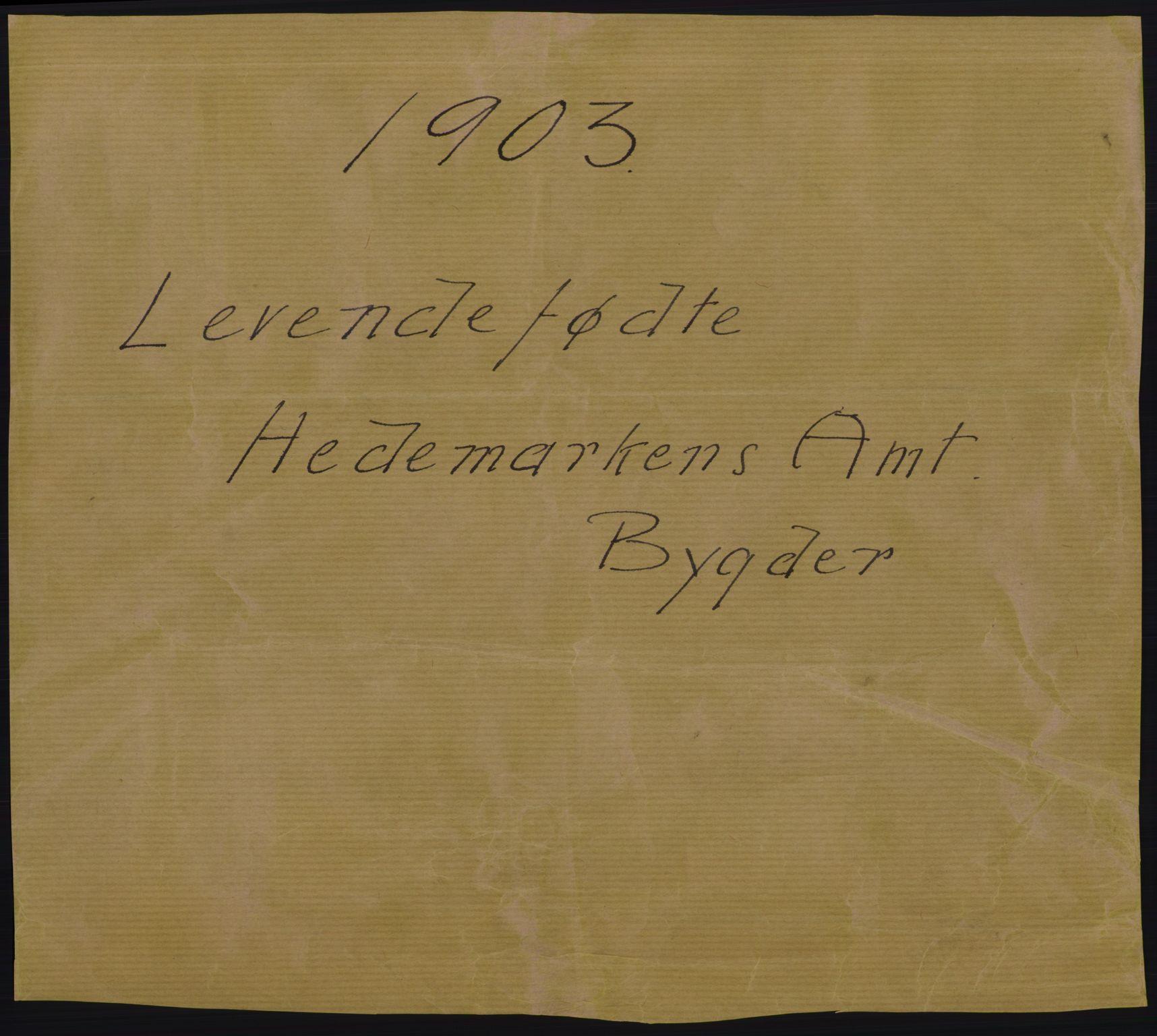 RA, Statistisk sentralbyrå, Sosiodemografiske emner, Befolkning, D/Df/Dfa/Dfaa/L0005: Hedemarkens amt: Fødte, gifte, døde, 1903, p. 1