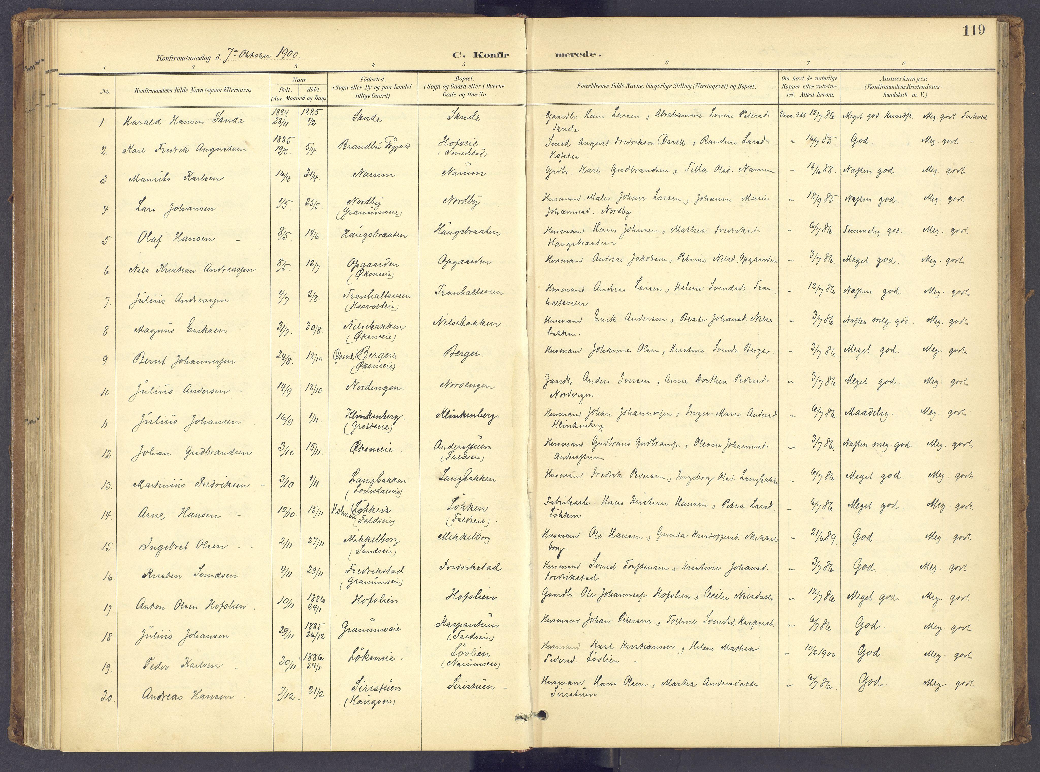 SAH, Søndre Land prestekontor, K/L0006: Parish register (official) no. 6, 1895-1904, p. 119