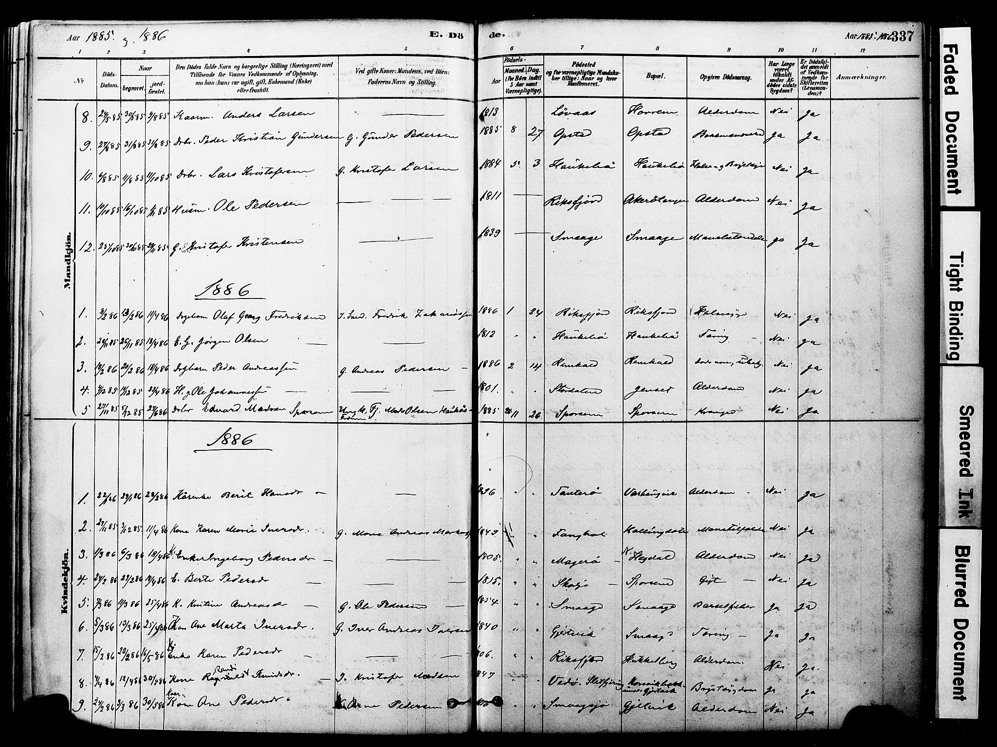 SAT, Ministerialprotokoller, klokkerbøker og fødselsregistre - Møre og Romsdal, 560/L0721: Parish register (official) no. 560A05, 1878-1917, p. 337