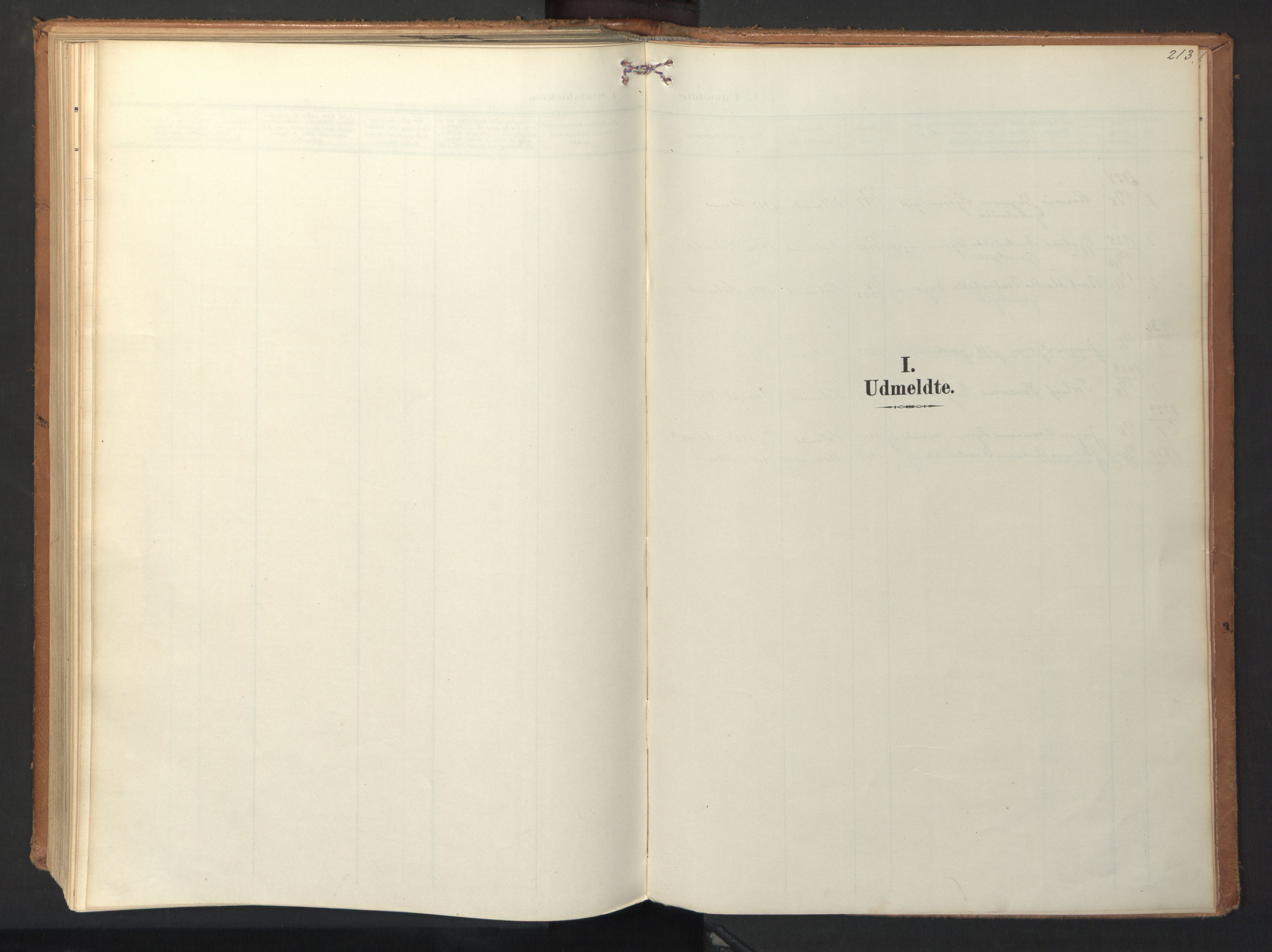 SAT, Ministerialprotokoller, klokkerbøker og fødselsregistre - Sør-Trøndelag, 694/L1128: Ministerialbok nr. 694A02, 1906-1931, s. 213