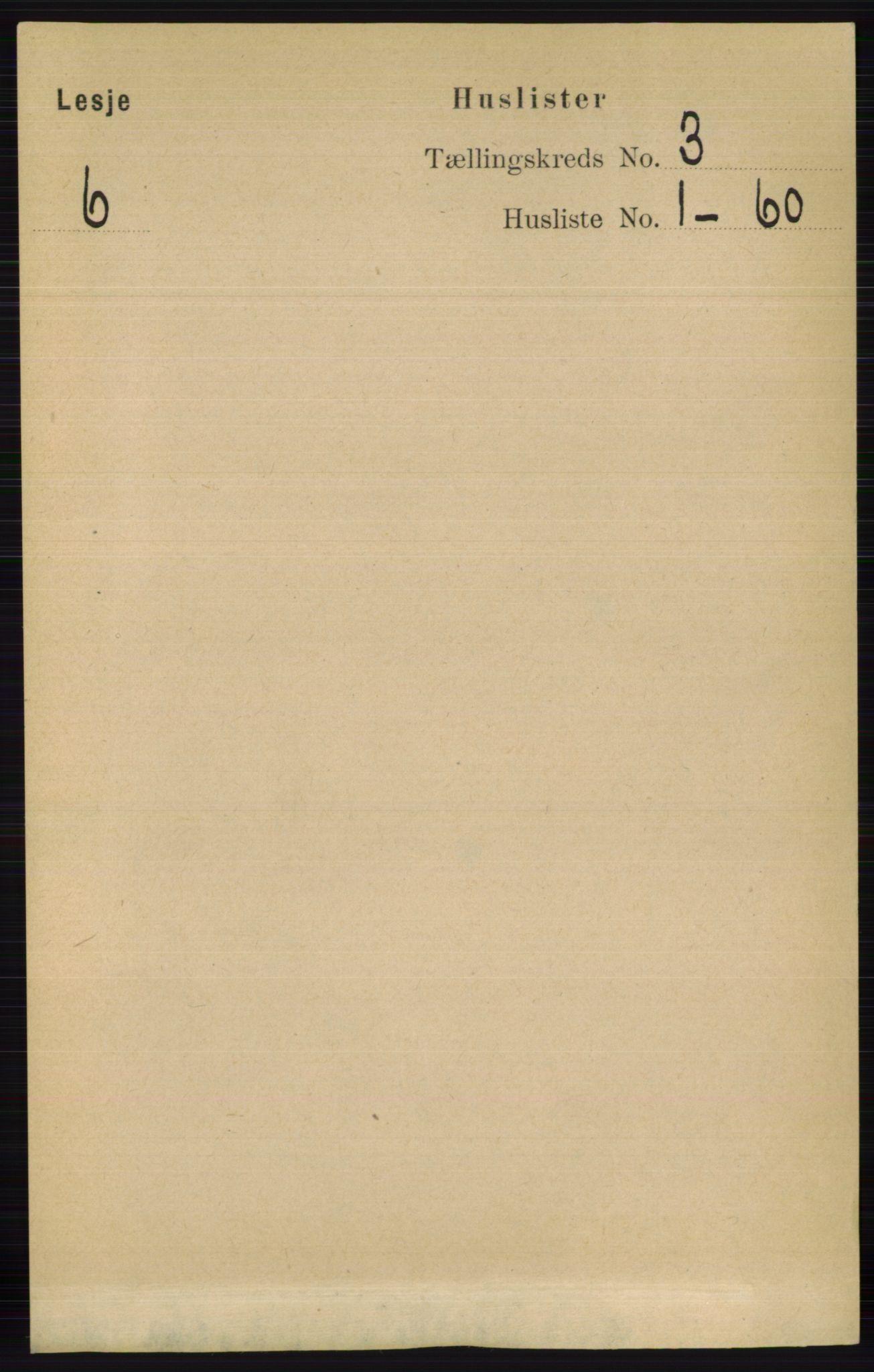RA, Folketelling 1891 for 0512 Lesja herred, 1891, s. 569
