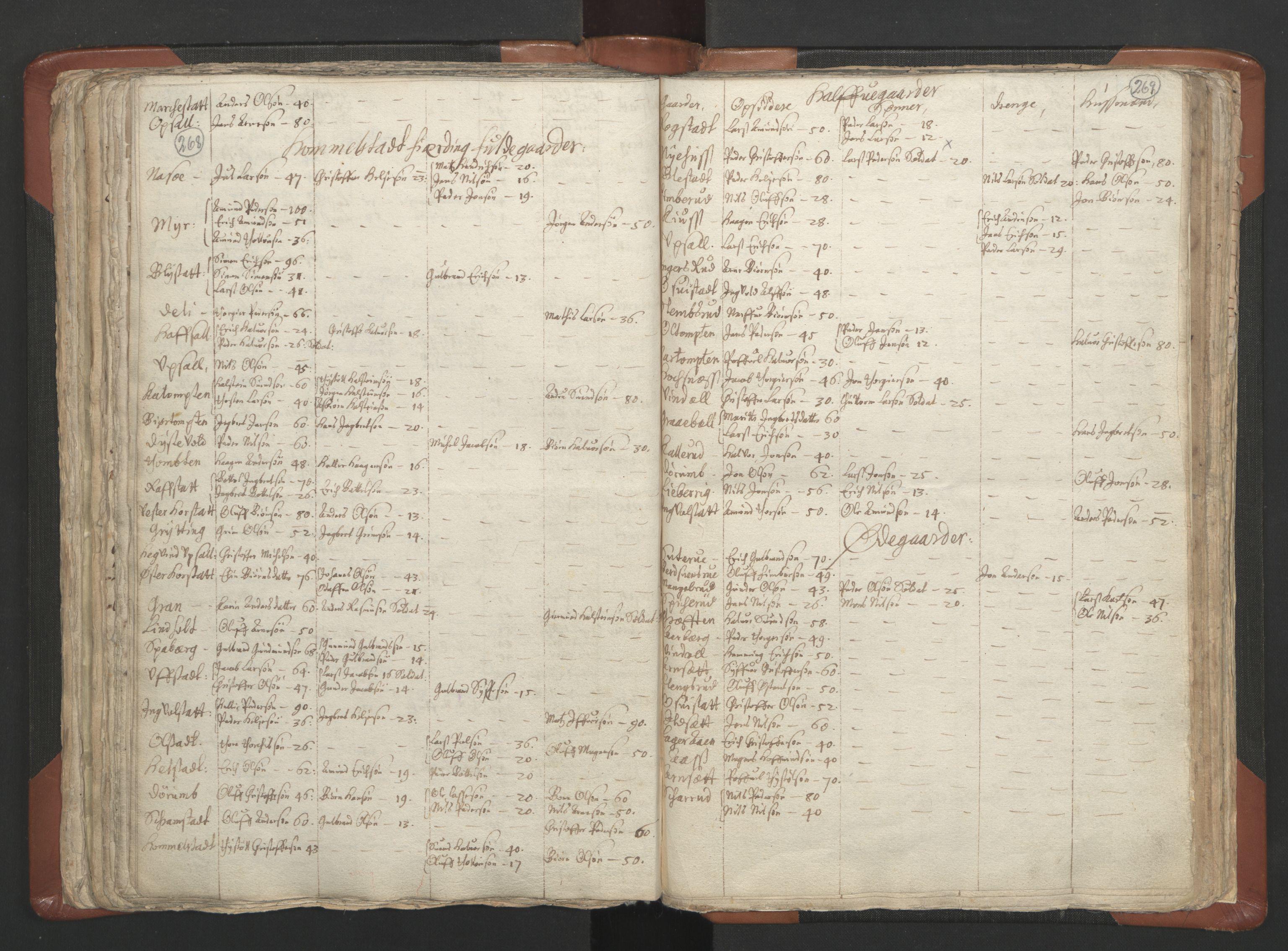 RA, Sogneprestenes manntall 1664-1666, nr. 5: Hedmark prosti, 1664-1666, s. 268-269