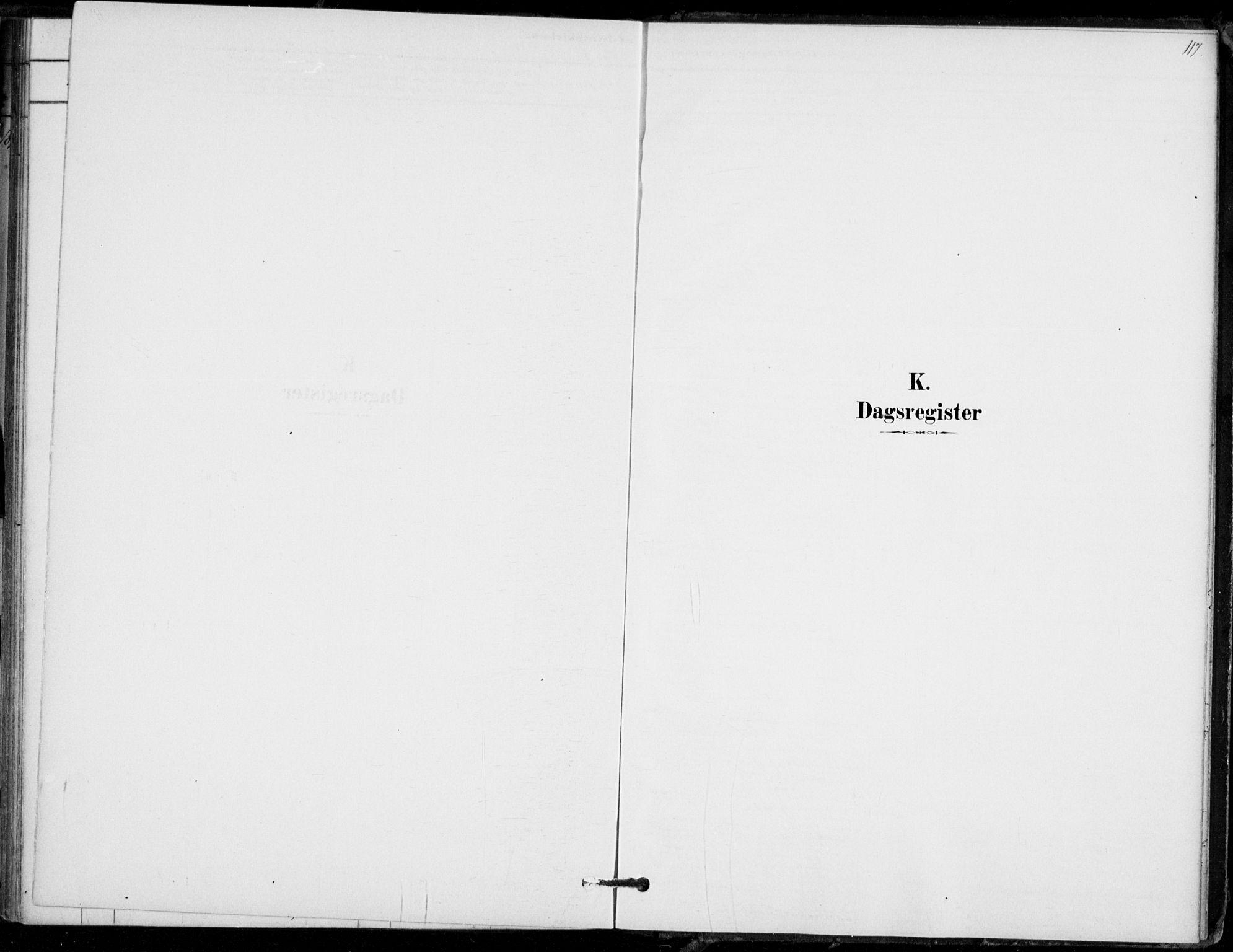SAKO, Hof kirkebøker, F/Fb/L0001: Ministerialbok nr. II 1, 1878-1907, s. 117