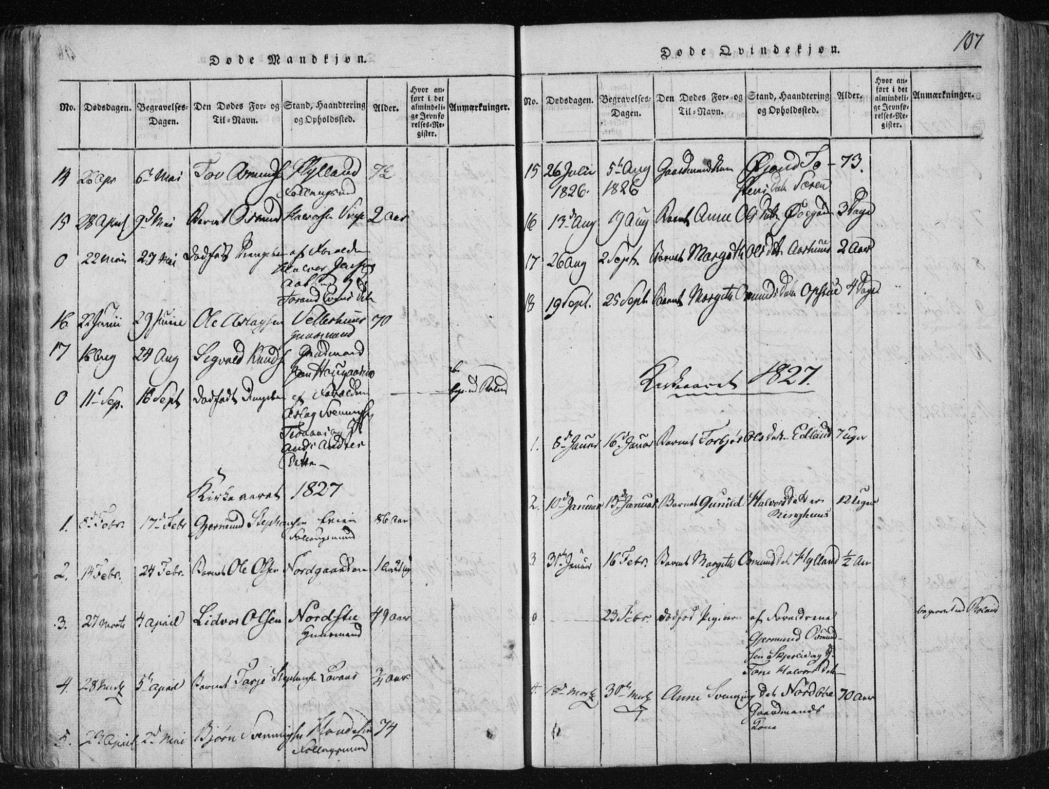 SAKO, Vinje kirkebøker, F/Fa/L0003: Ministerialbok nr. I 3, 1814-1843, s. 107
