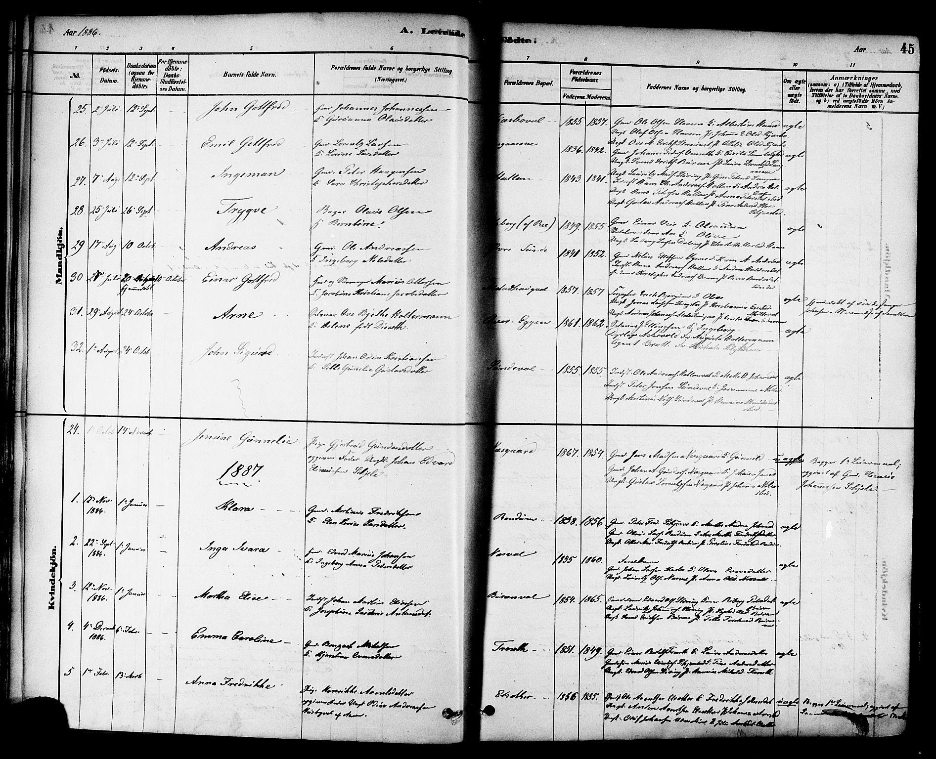 SAT, Ministerialprotokoller, klokkerbøker og fødselsregistre - Nord-Trøndelag, 717/L0159: Ministerialbok nr. 717A09, 1878-1898, s. 45
