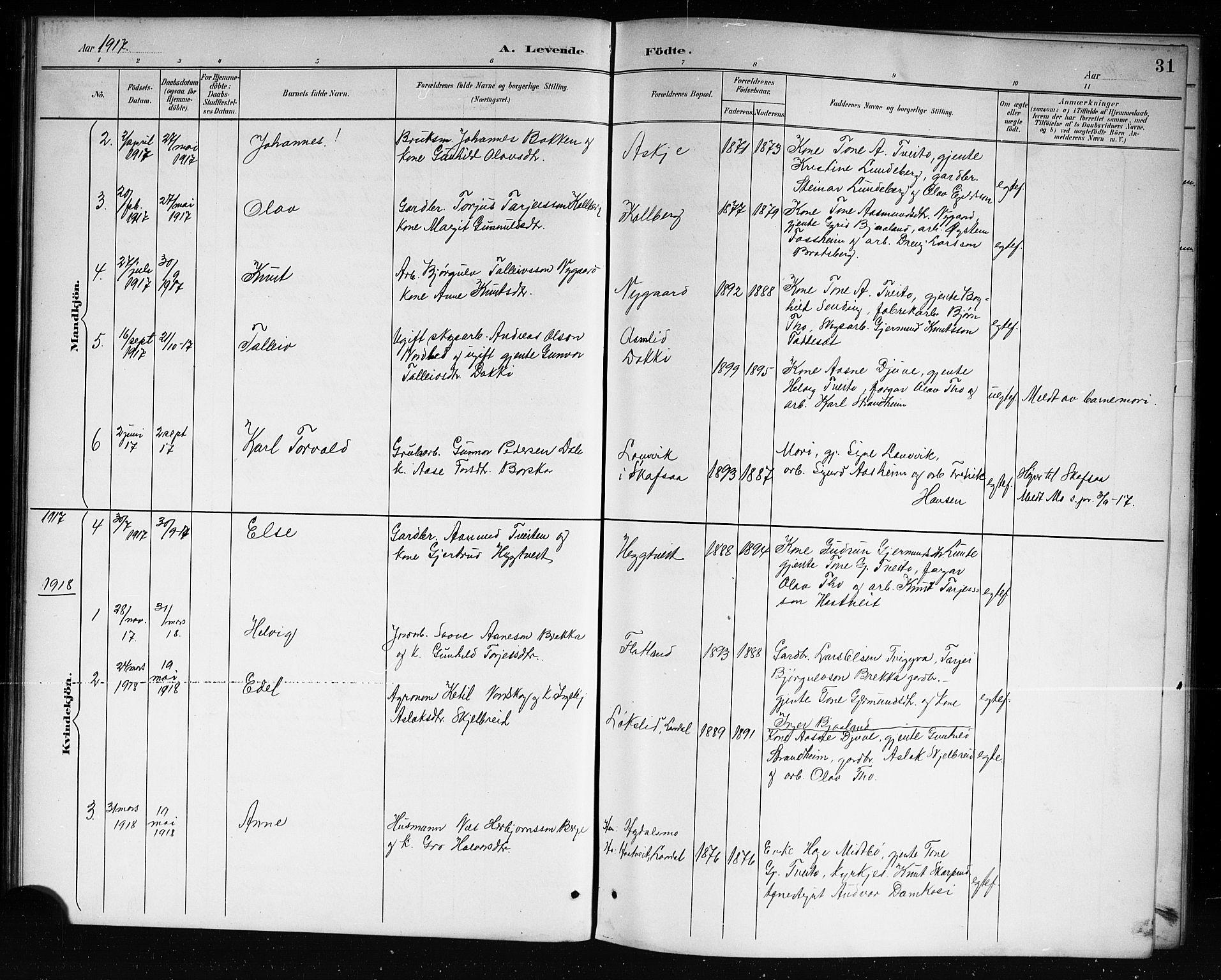 SAKO, Lårdal kirkebøker, G/Ga/L0003: Klokkerbok nr. I 3, 1891-1918, s. 31