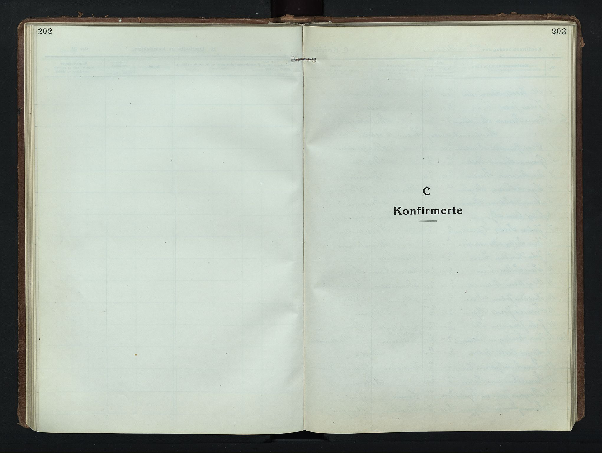 SAH, Nord-Fron prestekontor, Klokkerbok nr. 8, 1915-1948, s. 202-203