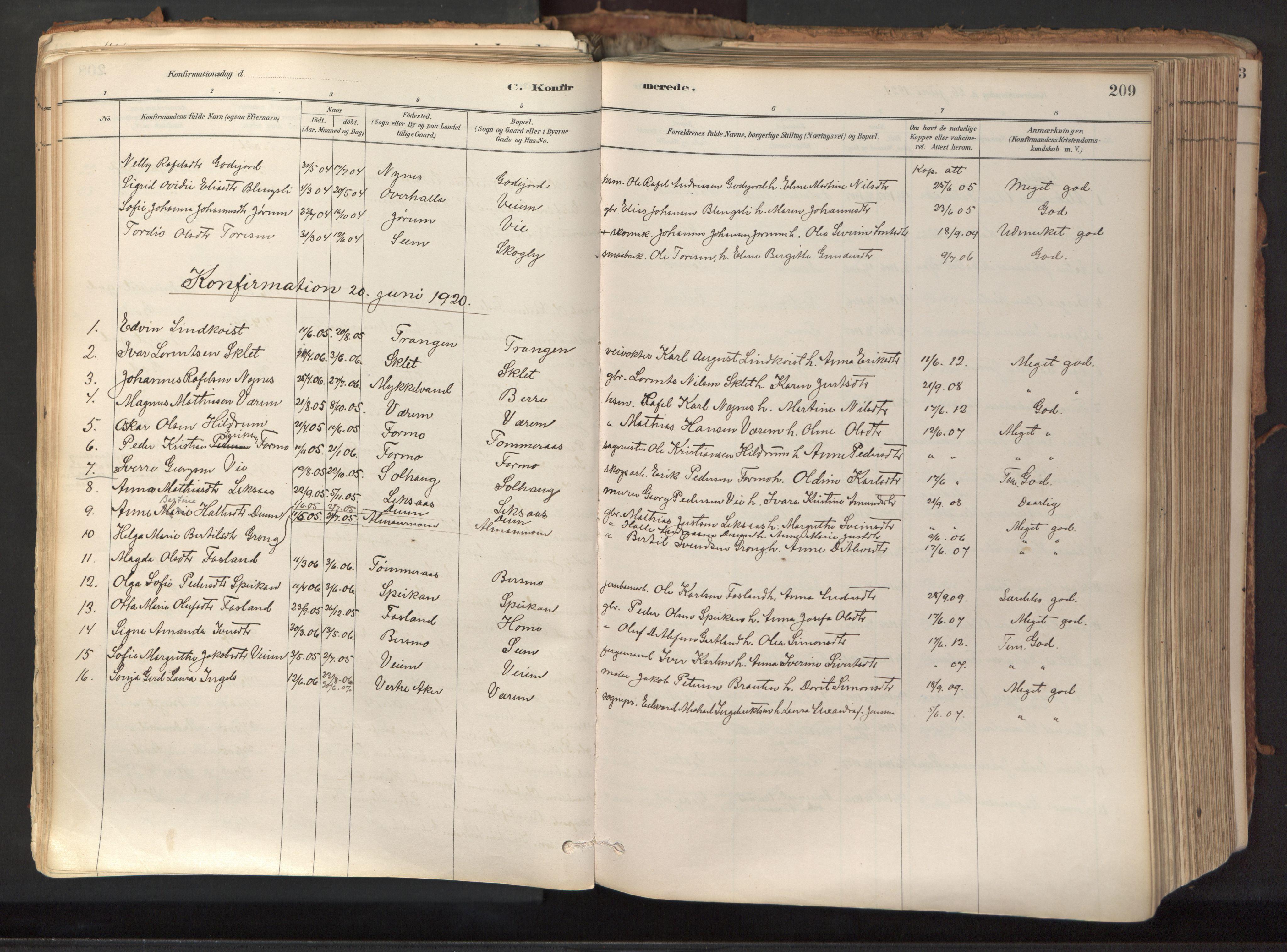 SAT, Ministerialprotokoller, klokkerbøker og fødselsregistre - Nord-Trøndelag, 758/L0519: Ministerialbok nr. 758A04, 1880-1926, s. 209