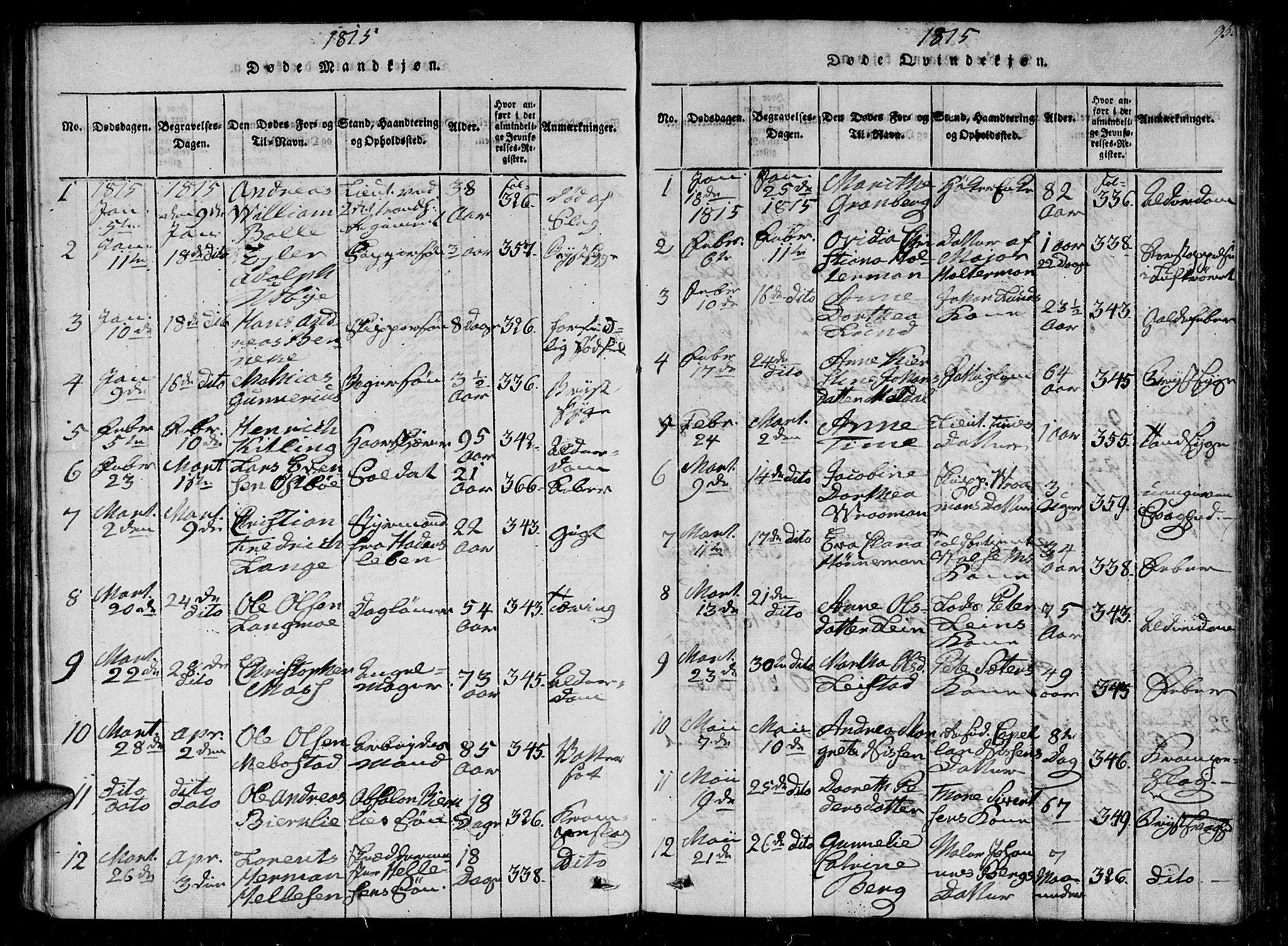 SAT, Ministerialprotokoller, klokkerbøker og fødselsregistre - Sør-Trøndelag, 602/L0107: Ministerialbok nr. 602A05, 1815-1821, s. 95
