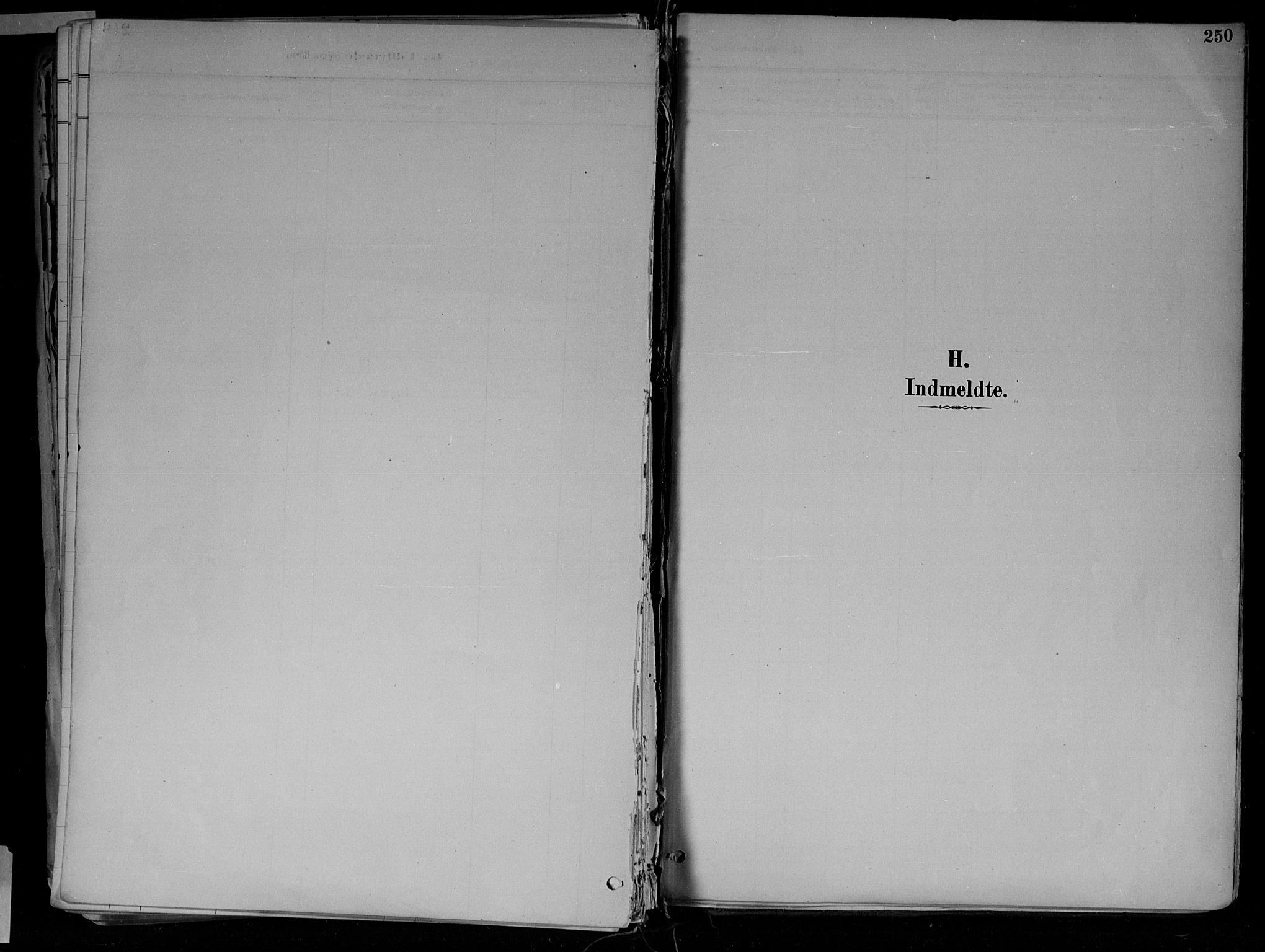 SAH, Jevnaker prestekontor, Ministerialbok nr. 10, 1891-1906, s. 250