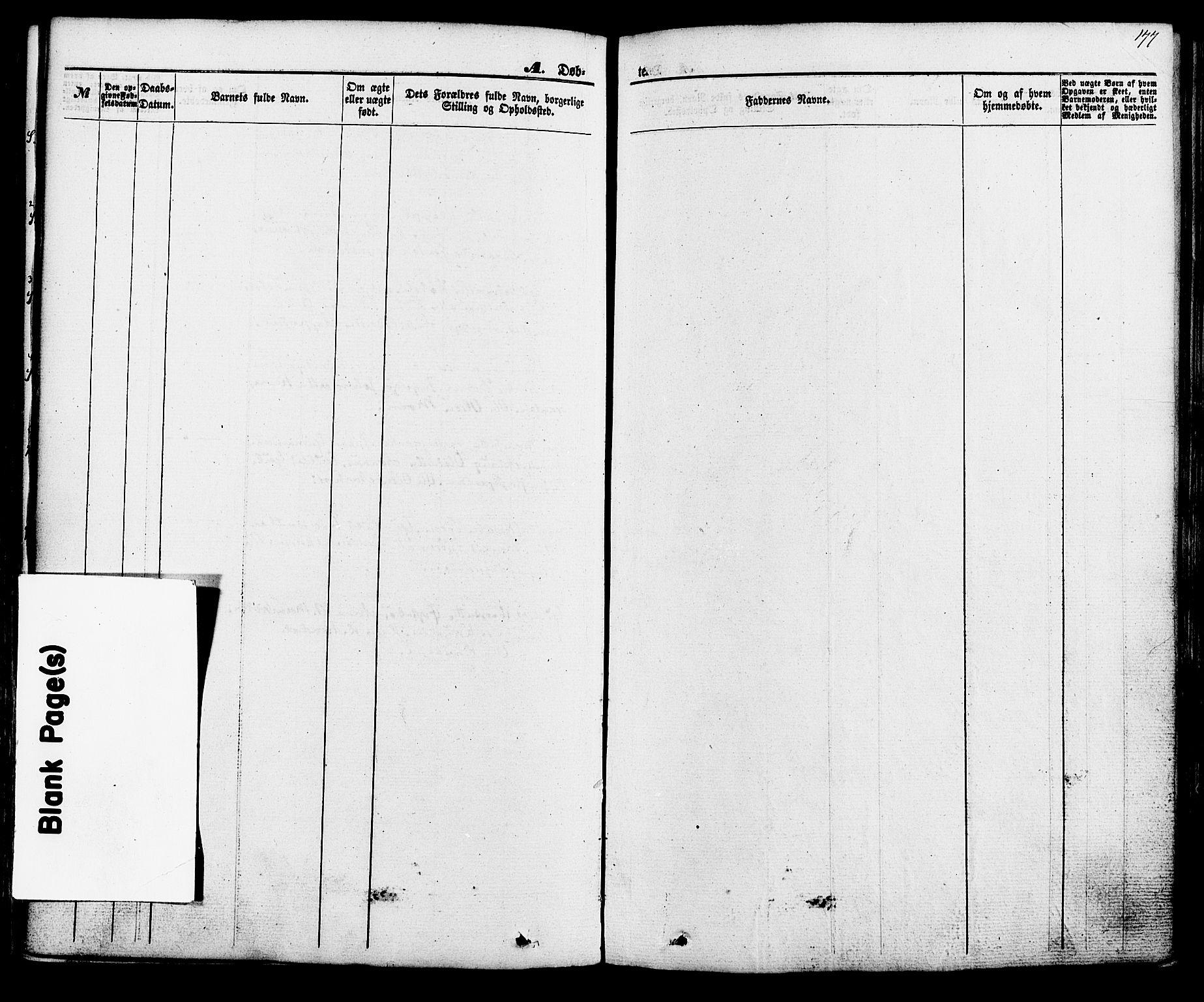 SAKO, Hjartdal kirkebøker, F/Fa/L0009: Ministerialbok nr. I 9, 1860-1879, s. 177