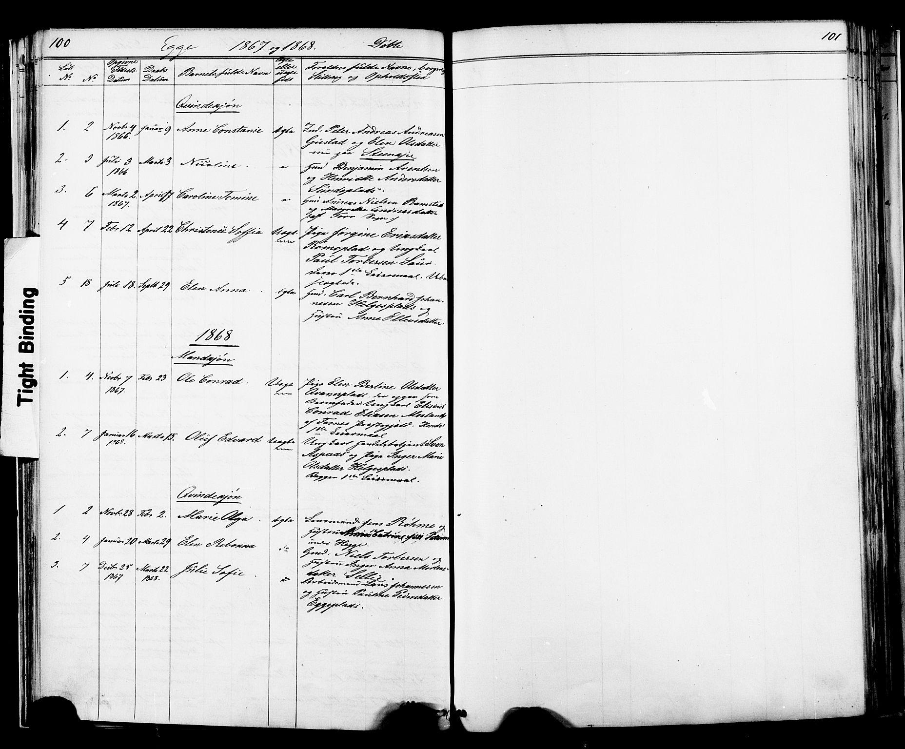 SAT, Ministerialprotokoller, klokkerbøker og fødselsregistre - Nord-Trøndelag, 739/L0367: Ministerialbok nr. 739A01 /3, 1838-1868, s. 100-101