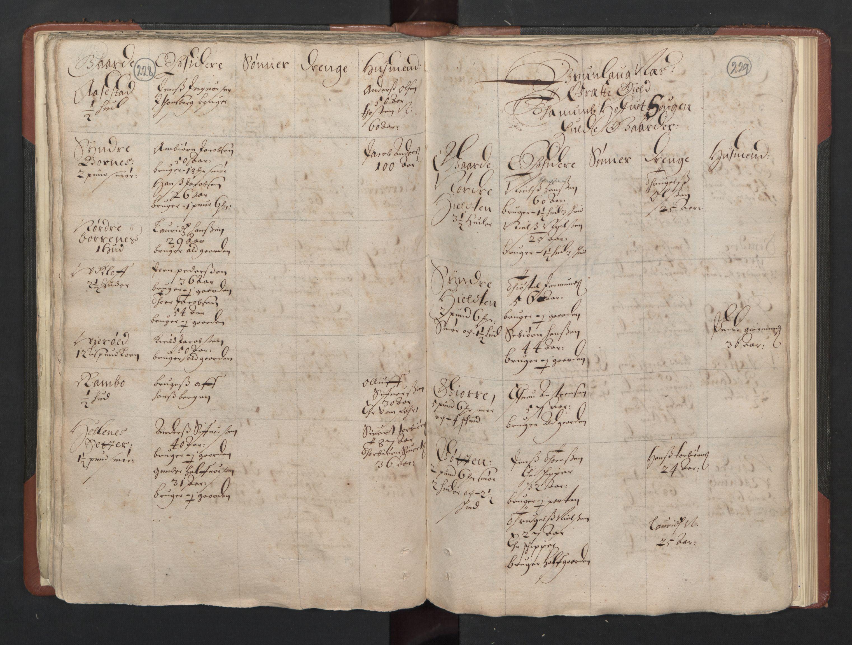 RA, Fogdenes og sorenskrivernes manntall 1664-1666, nr. 5: Fogderier (len og skipreider) i nåværende Buskerud fylke og Vestfold fylke, 1664, s. 228-229