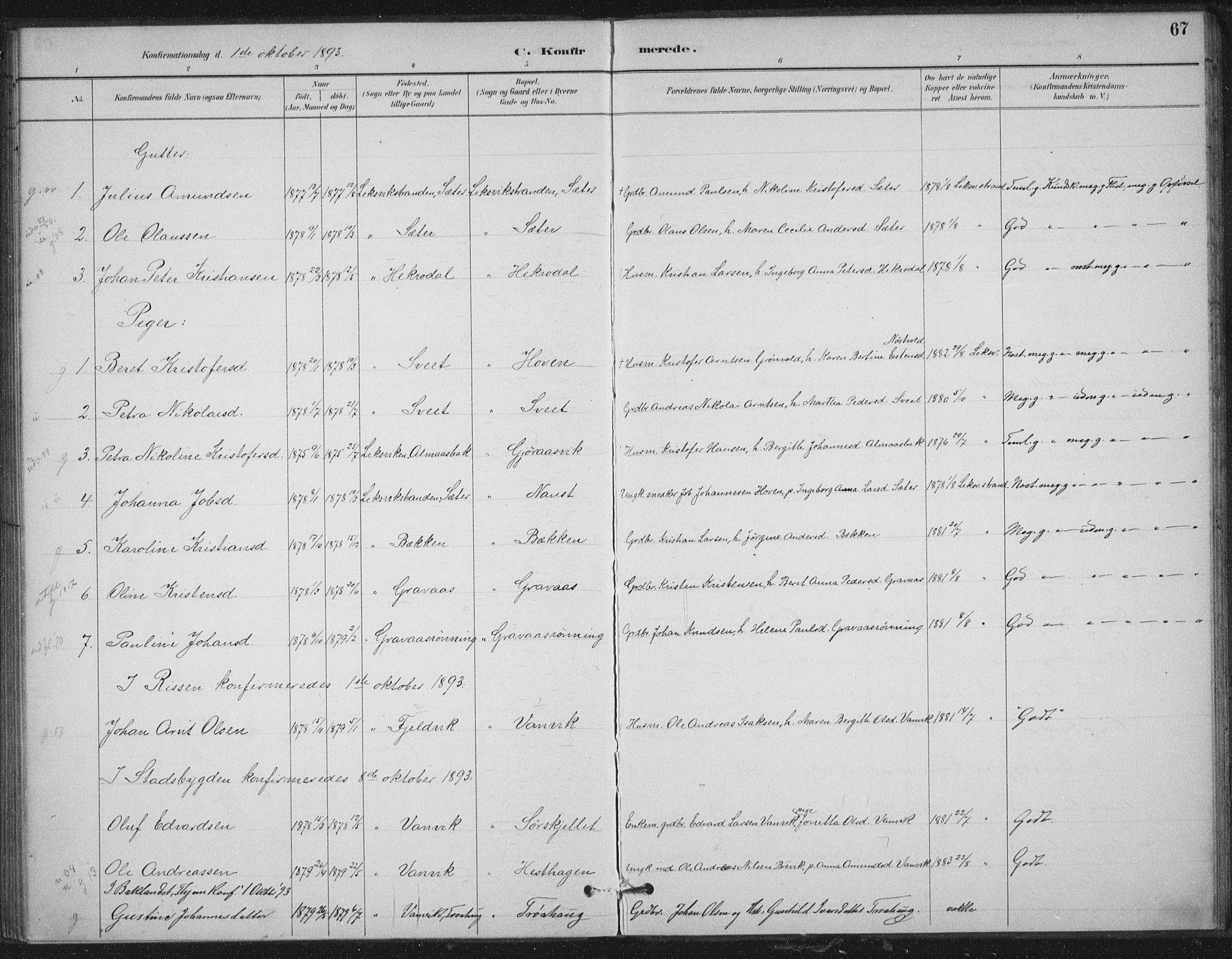 SAT, Ministerialprotokoller, klokkerbøker og fødselsregistre - Nord-Trøndelag, 702/L0023: Ministerialbok nr. 702A01, 1883-1897, s. 67