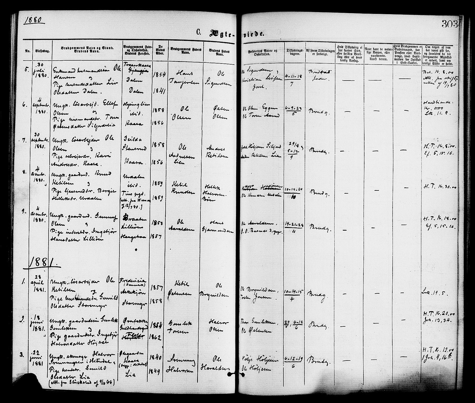 SAKO, Gransherad kirkebøker, F/Fa/L0004: Ministerialbok nr. I 4, 1871-1886, s. 303