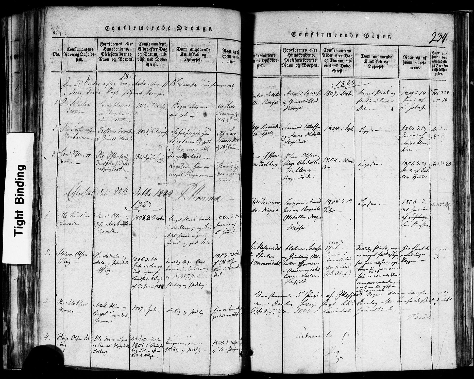 SAKO, Rauland kirkebøker, F/Fa/L0002: Ministerialbok nr. 2, 1815-1860, s. 234