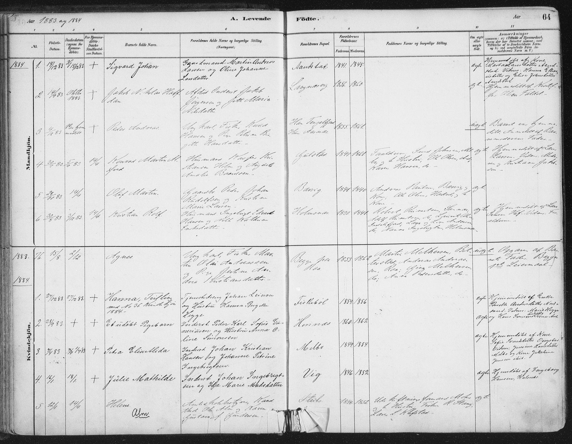 SAT, Ministerialprotokoller, klokkerbøker og fødselsregistre - Nordland, 888/L1244: Ministerialbok nr. 888A10, 1880-1890, s. 64