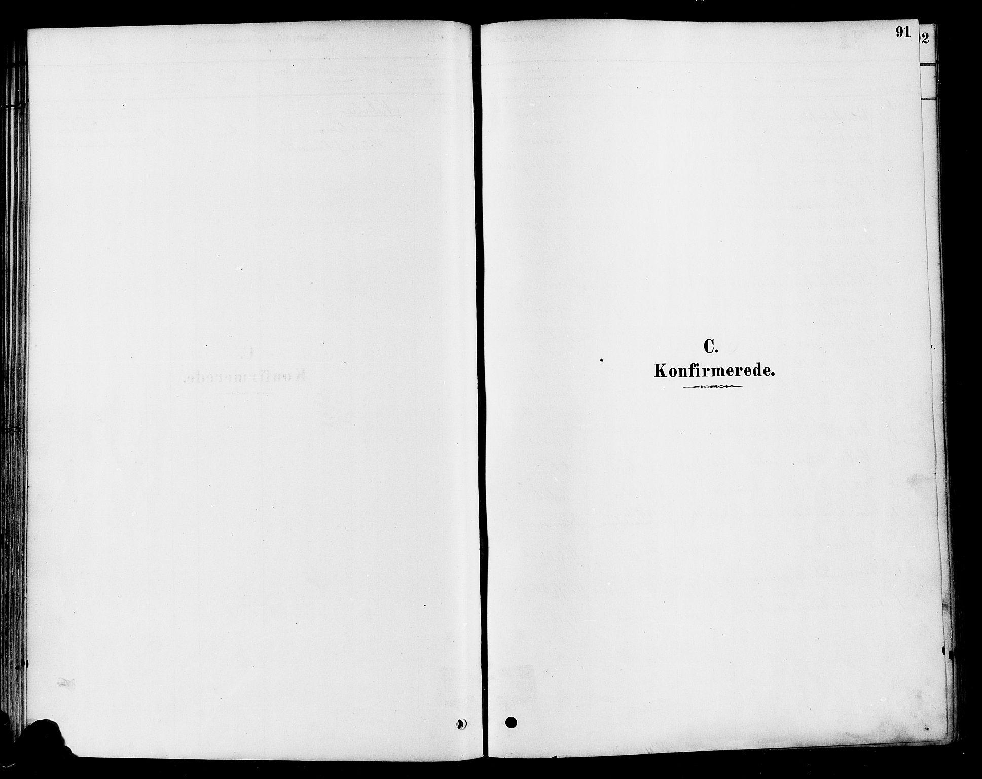 SAH, Vestre Toten prestekontor, Ministerialbok nr. 10, 1878-1894, s. 91