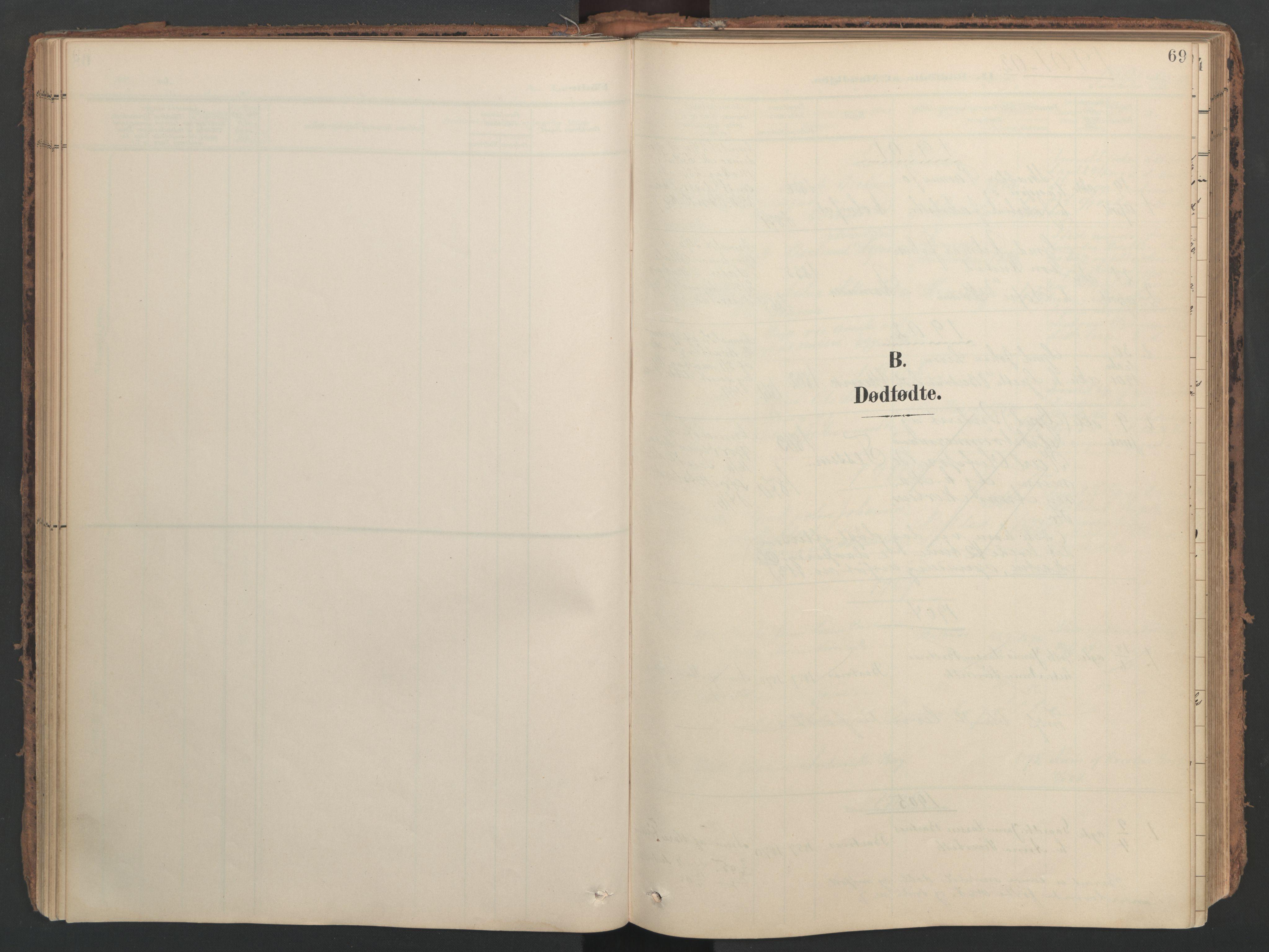 SAT, Ministerialprotokoller, klokkerbøker og fødselsregistre - Nord-Trøndelag, 741/L0397: Ministerialbok nr. 741A11, 1901-1911, s. 69