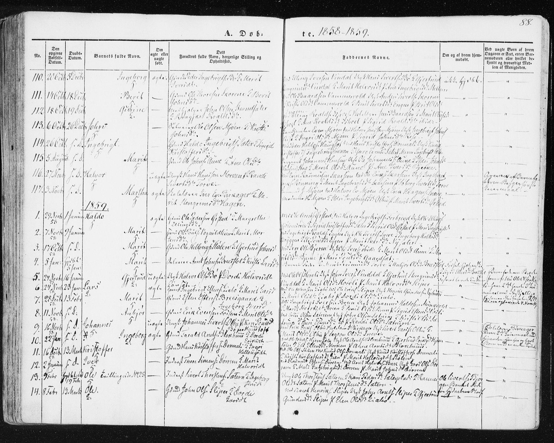 SAT, Ministerialprotokoller, klokkerbøker og fødselsregistre - Sør-Trøndelag, 678/L0899: Ministerialbok nr. 678A08, 1848-1872, s. 88