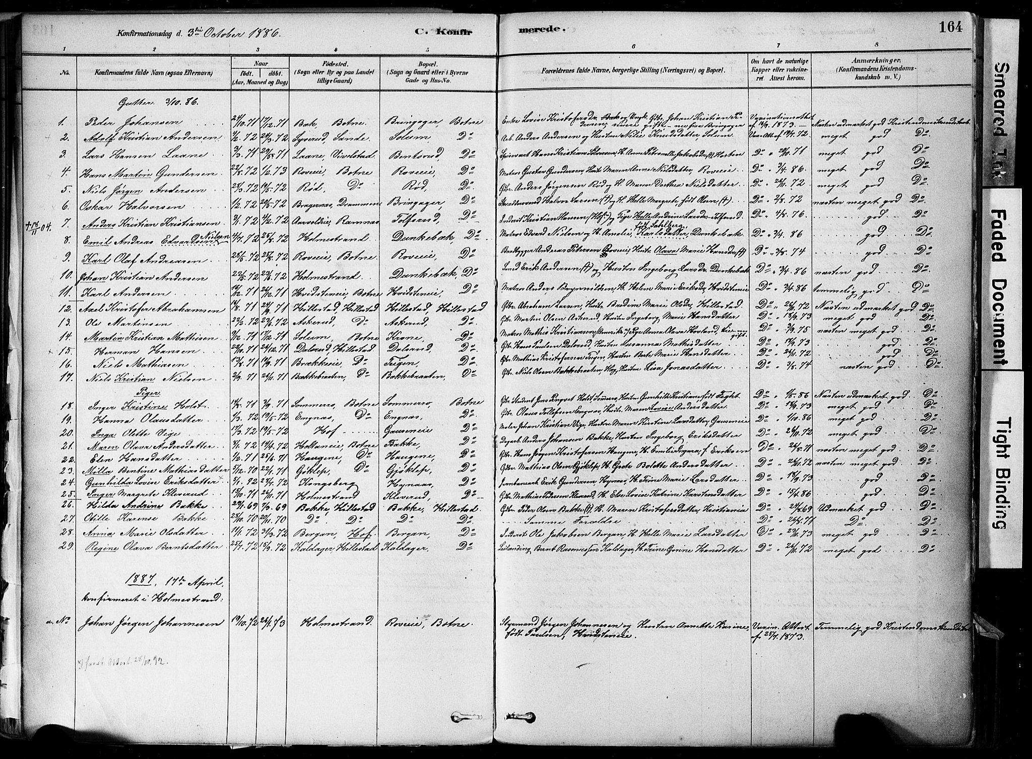 SAKO, Botne kirkebøker, F/Fa/L0007: Ministerialbok nr. I 7, 1878-1910, s. 164