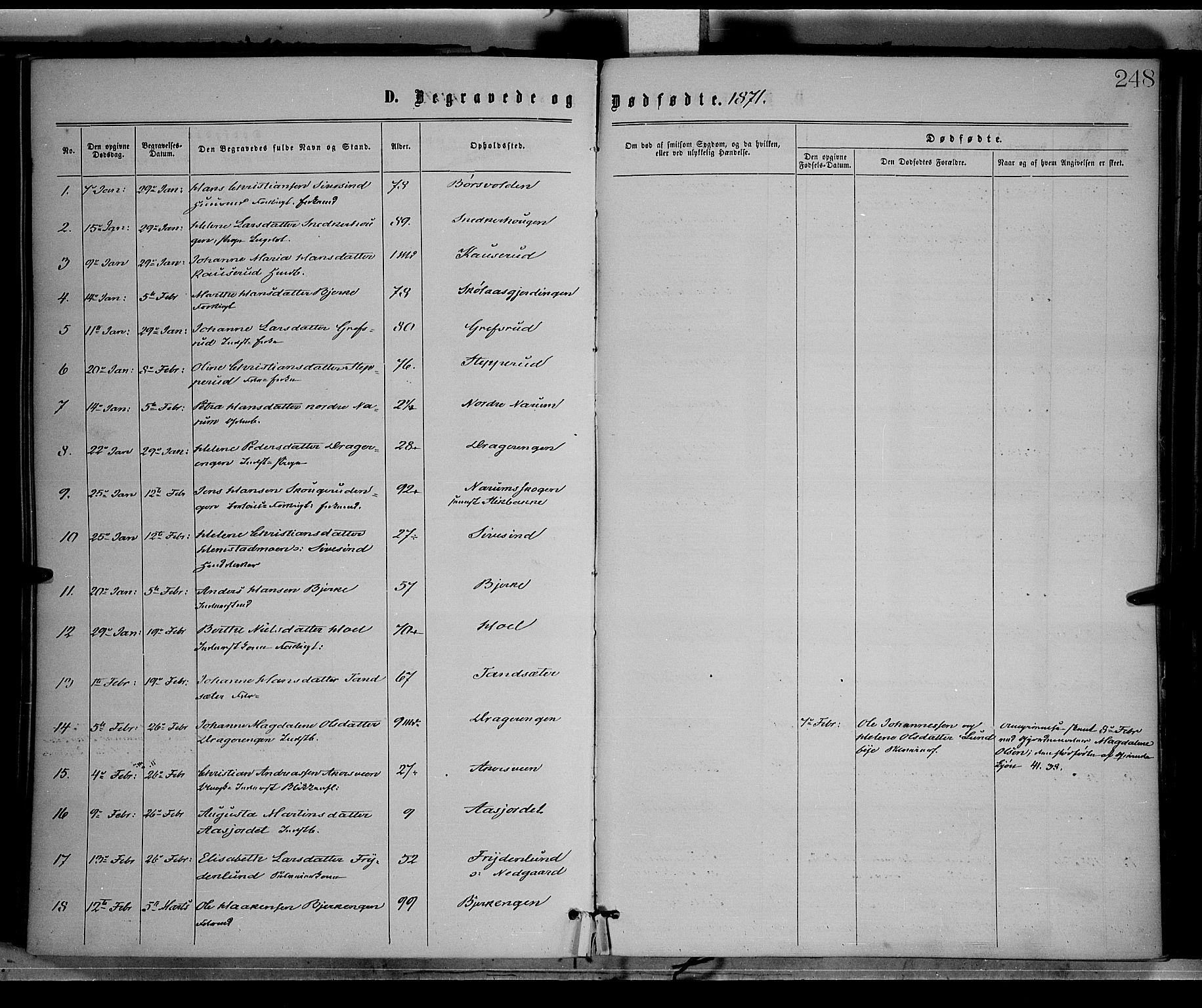 SAH, Vestre Toten prestekontor, H/Ha/Haa/L0008: Ministerialbok nr. 8, 1870-1877, s. 248