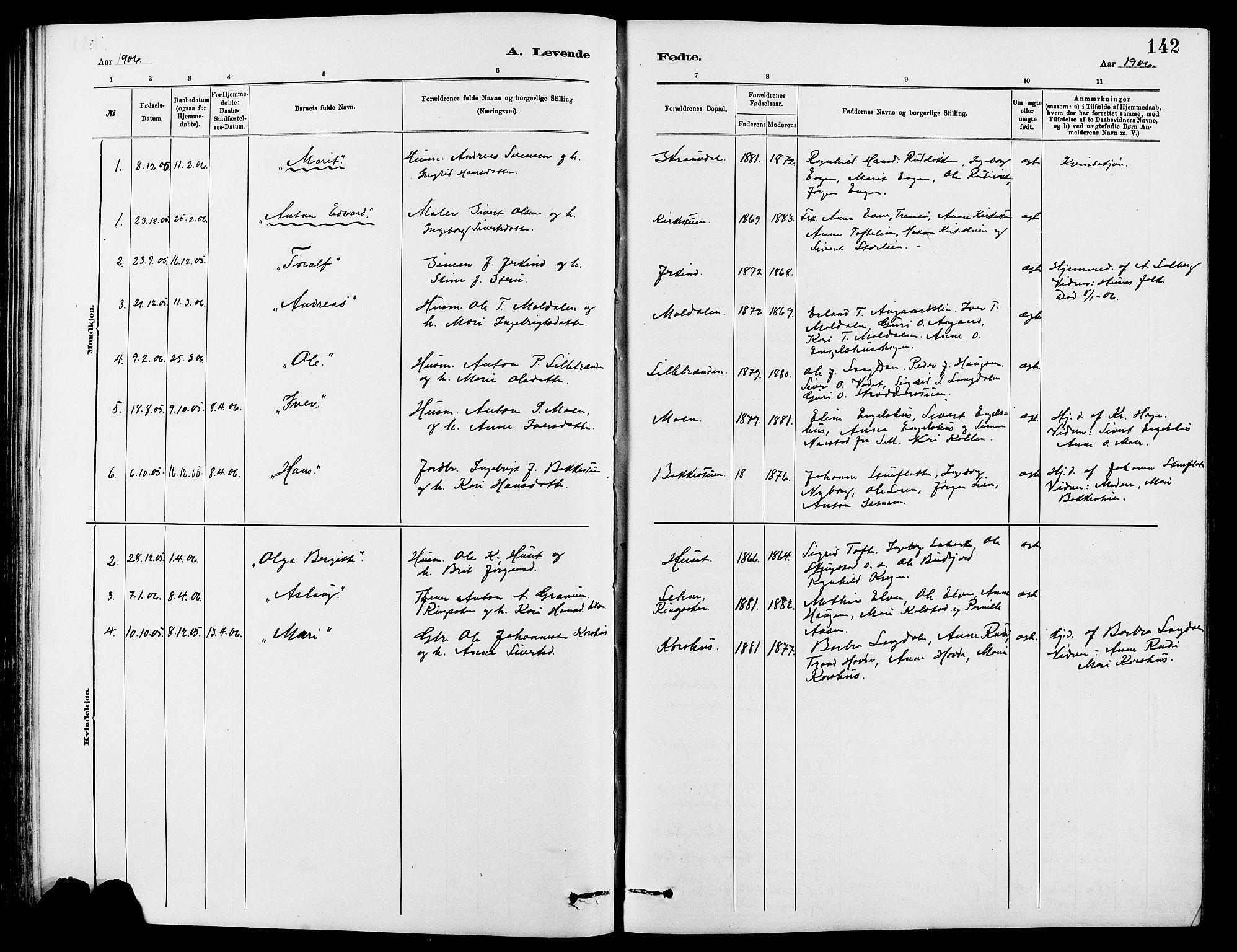 SAH, Dovre prestekontor, Klokkerbok nr. 2, 1881-1907, s. 142