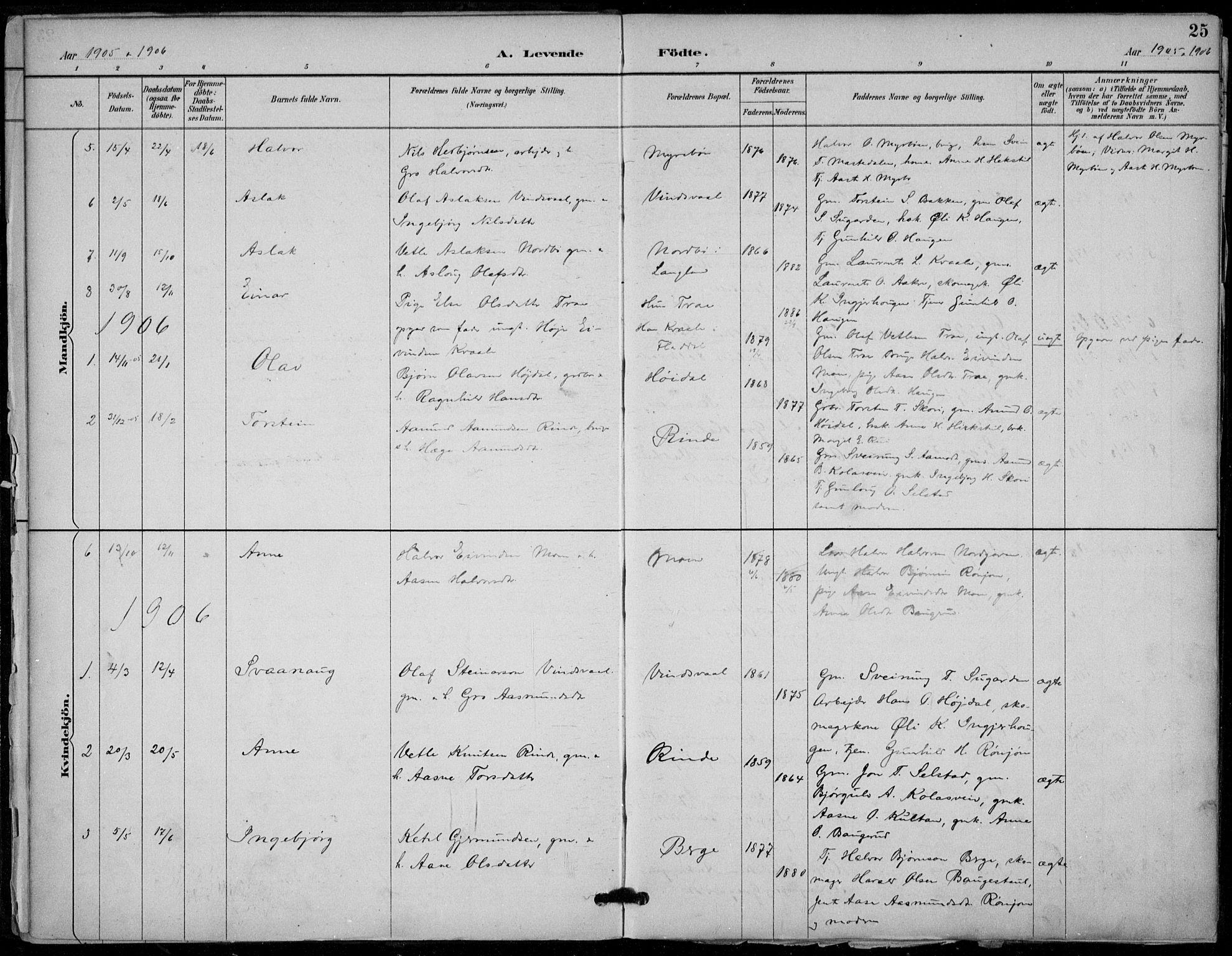 SAKO, Seljord kirkebøker, F/Fc/L0002: Ministerialbok nr. III 2, 1887-1920, s. 25