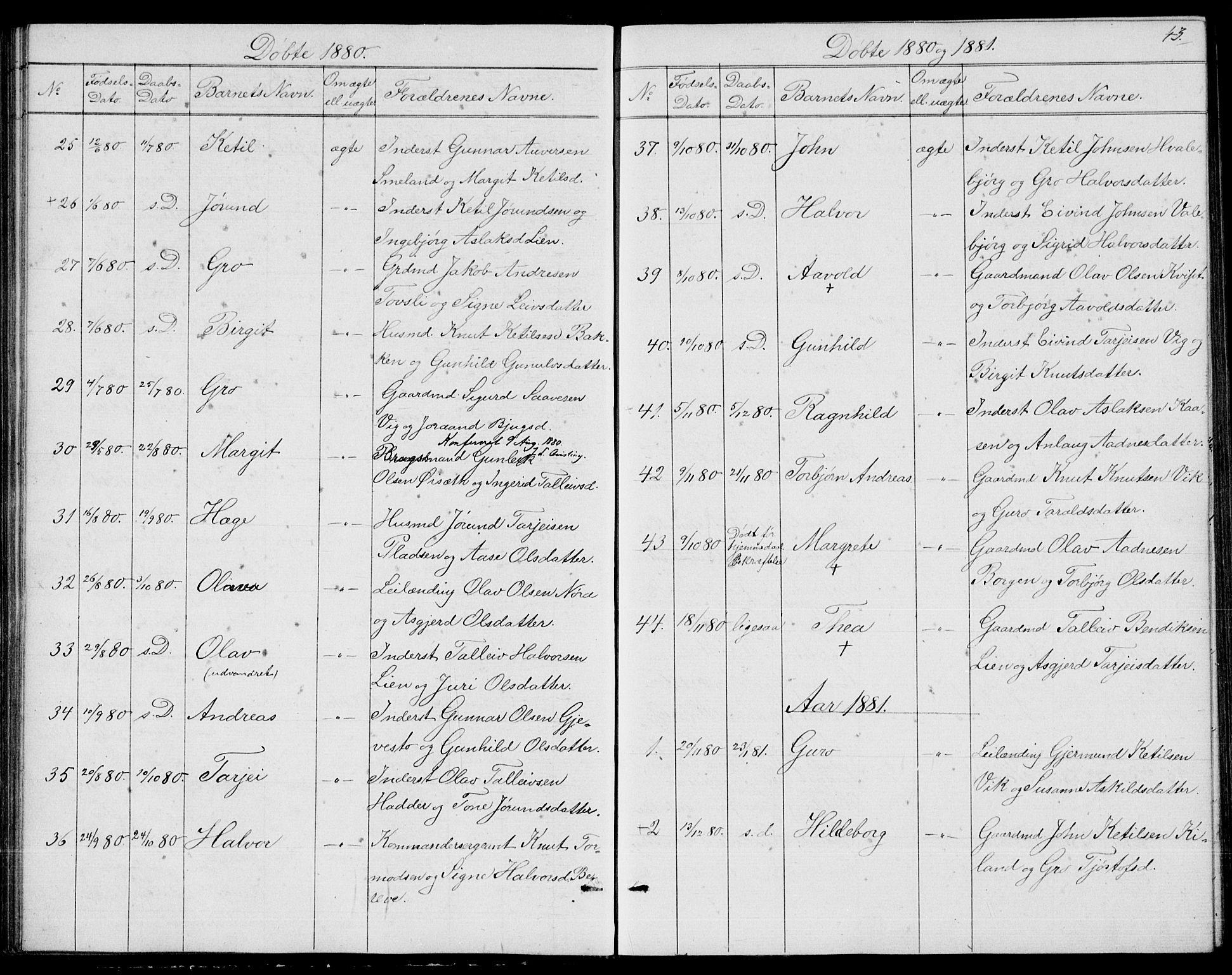 SAKO, Fyresdal kirkebøker, G/Ga/L0004: Klokkerbok nr. I 4, 1864-1892, s. 43