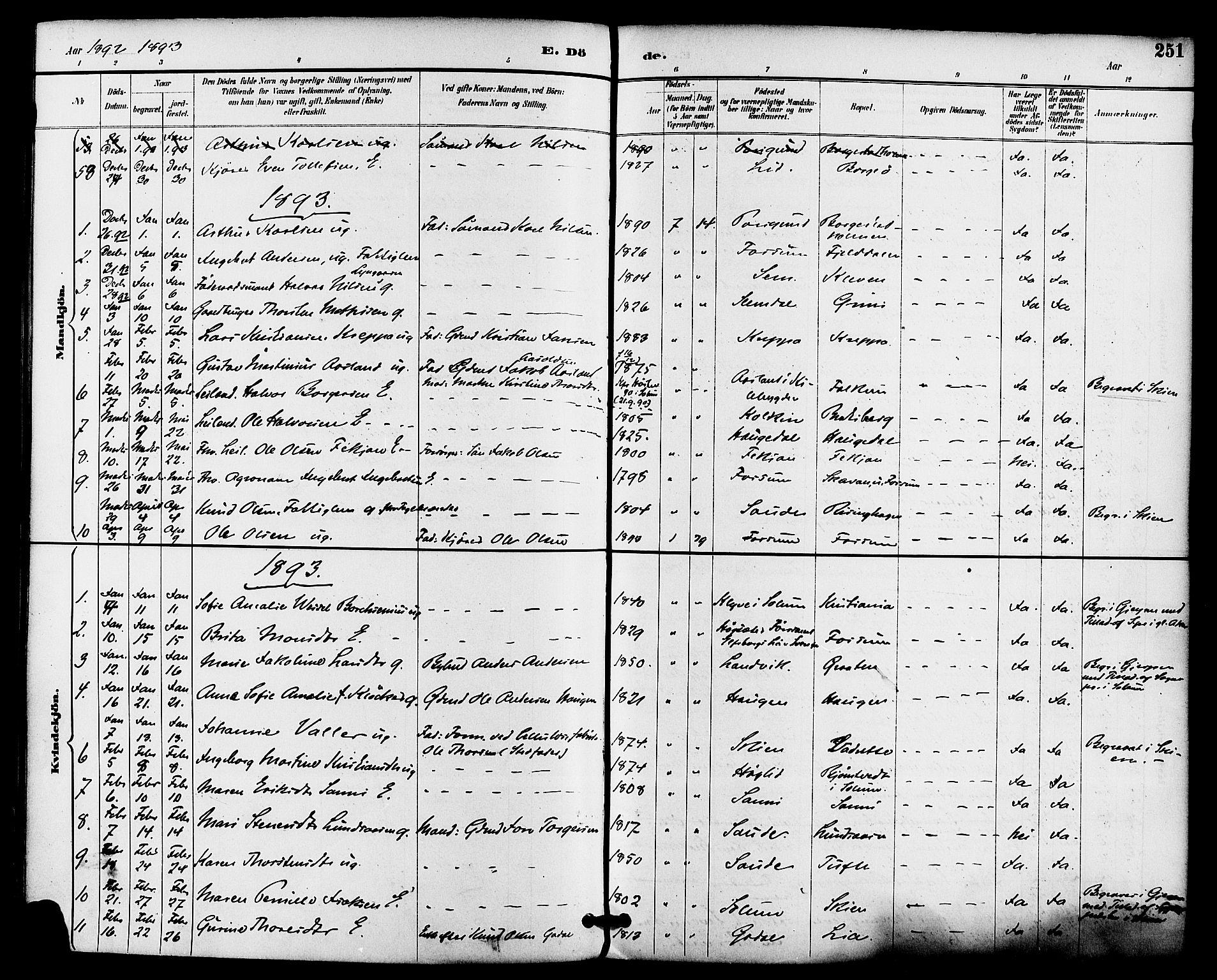 SAKO, Gjerpen kirkebøker, F/Fa/L0010: Ministerialbok nr. 10, 1886-1895, s. 251