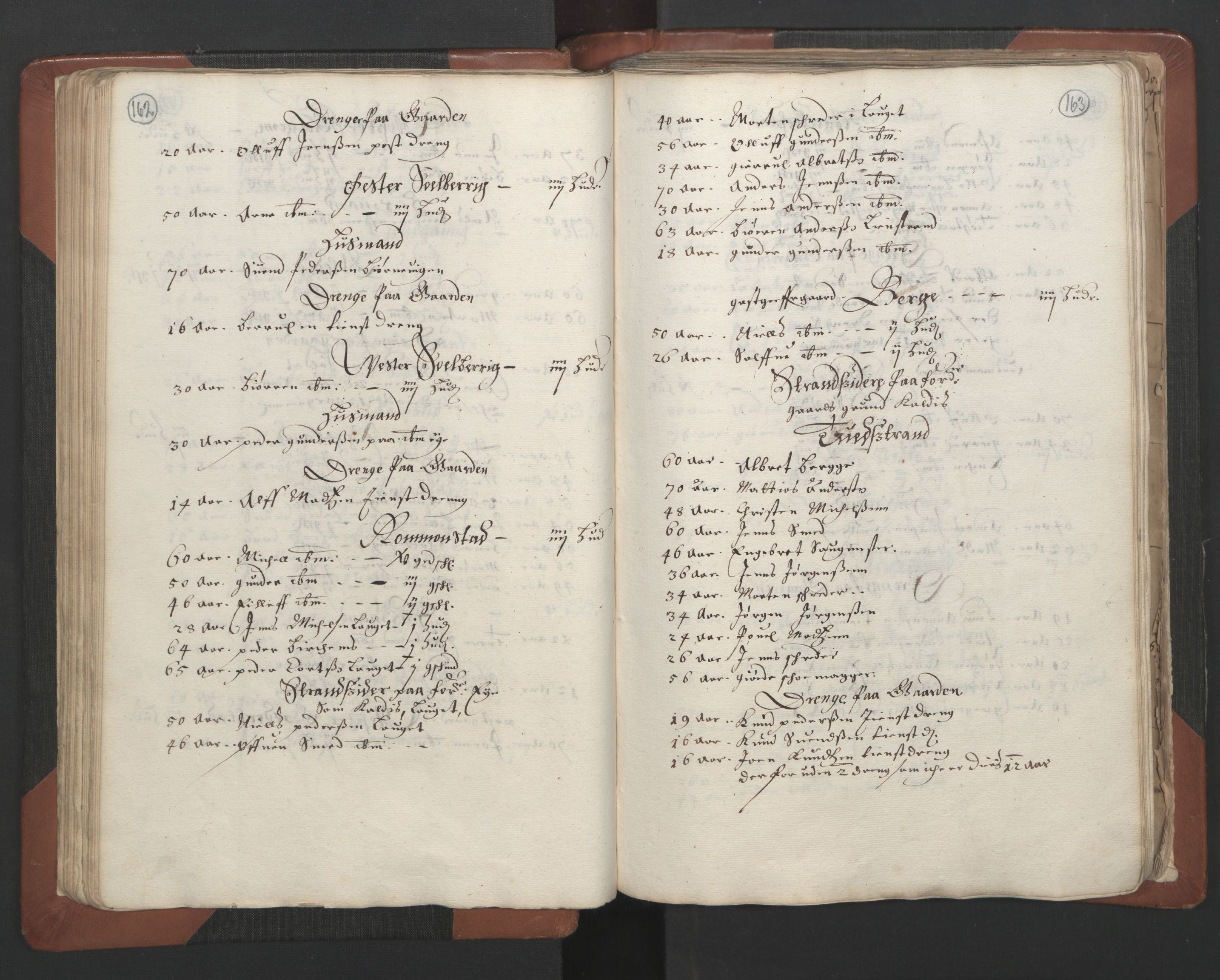 RA, Fogdenes og sorenskrivernes manntall 1664-1666, nr. 7: Nedenes fogderi, 1664-1666, s. 162-163