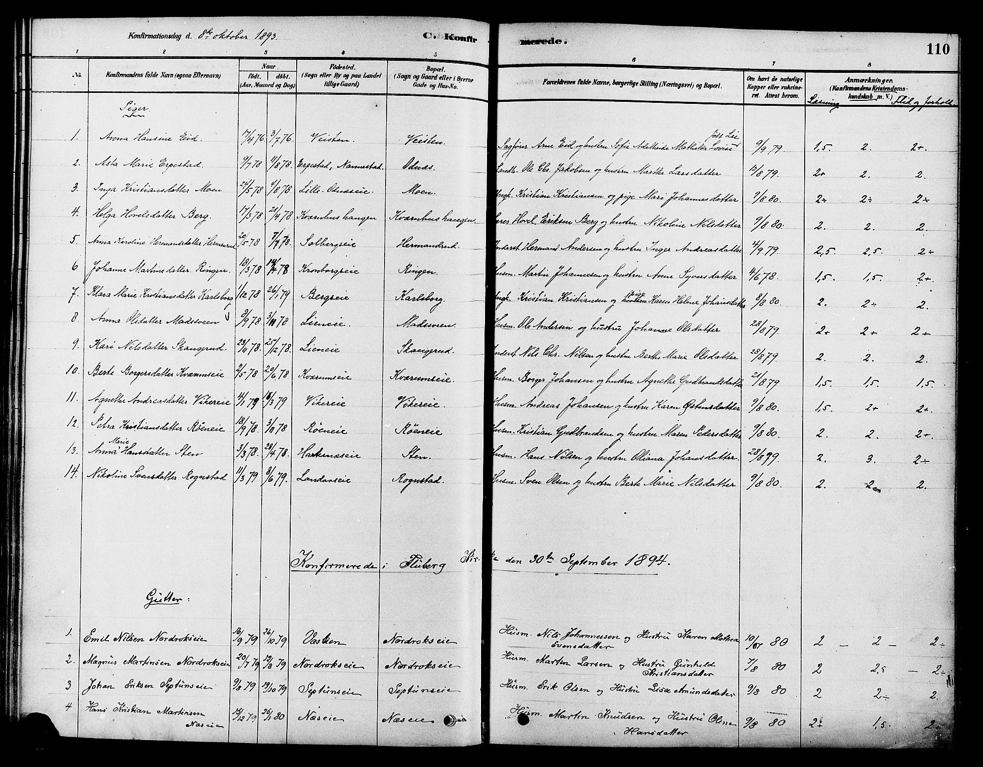SAH, Søndre Land prestekontor, K/L0002: Ministerialbok nr. 2, 1878-1894, s. 110