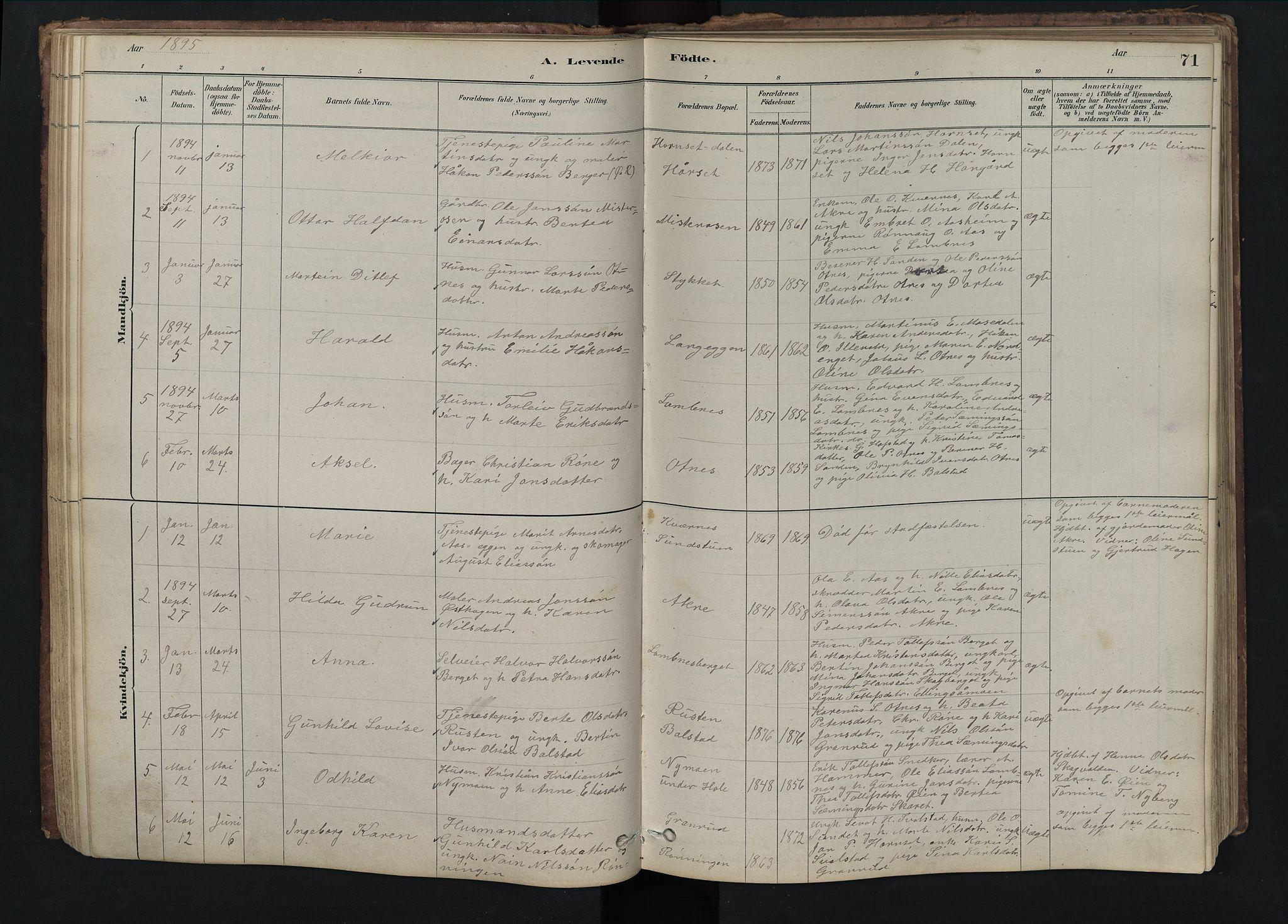 SAH, Rendalen prestekontor, H/Ha/Hab/L0009: Klokkerbok nr. 9, 1879-1902, s. 71