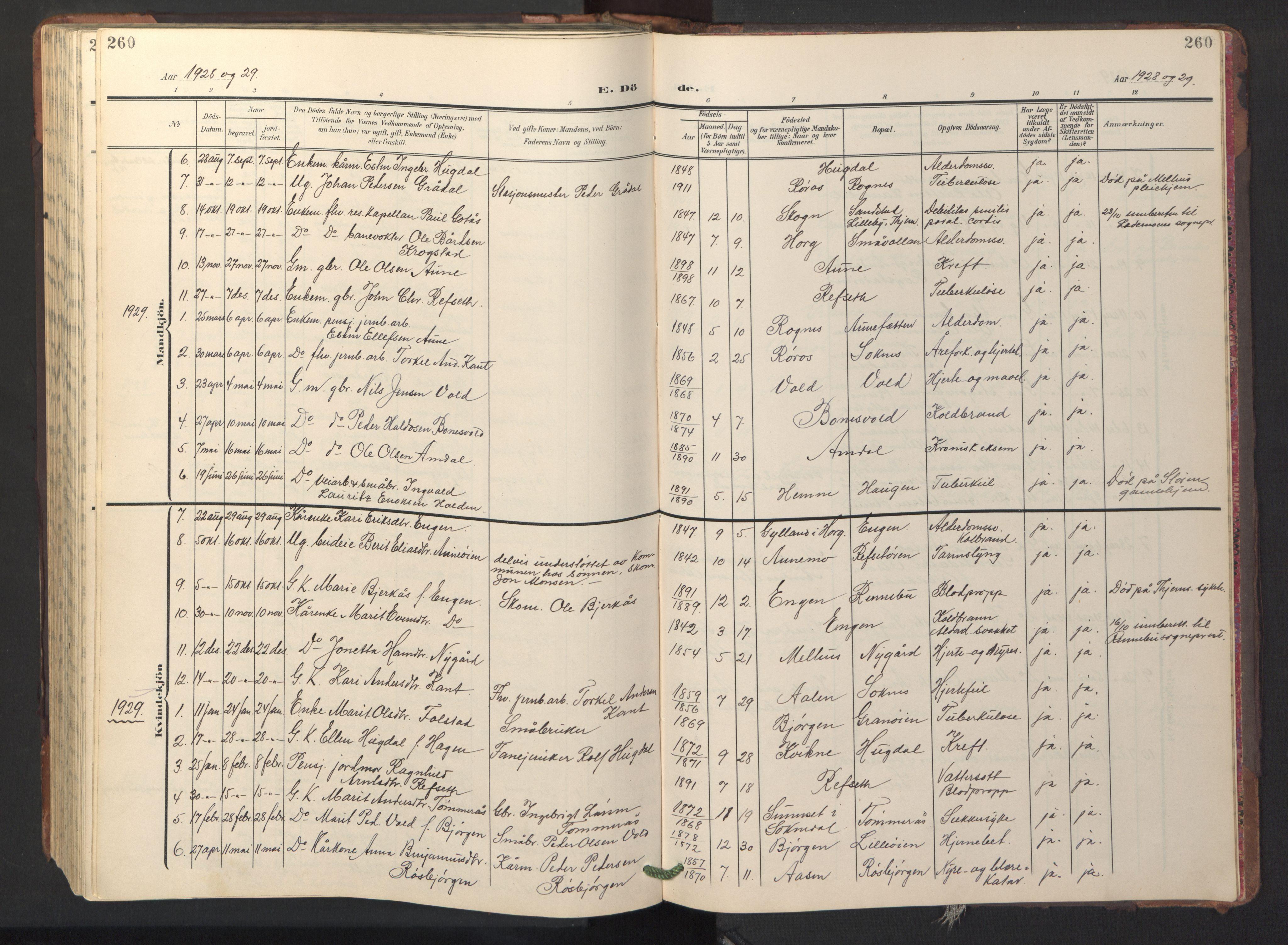 SAT, Ministerialprotokoller, klokkerbøker og fødselsregistre - Sør-Trøndelag, 687/L1019: Klokkerbok nr. 687C03, 1904-1931, s. 260
