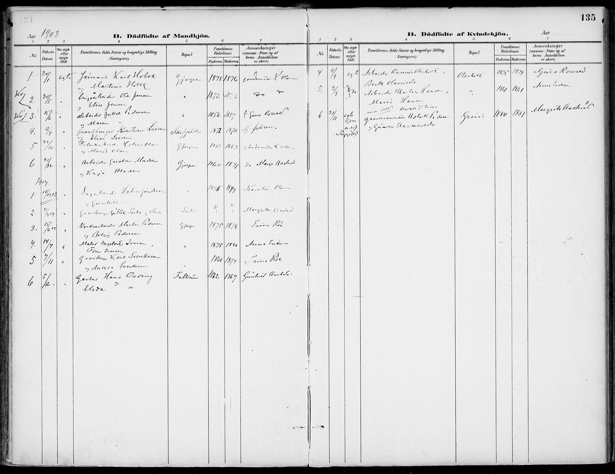 SAKO, Gjerpen kirkebøker, F/Fa/L0011: Ministerialbok nr. 11, 1896-1904, s. 135