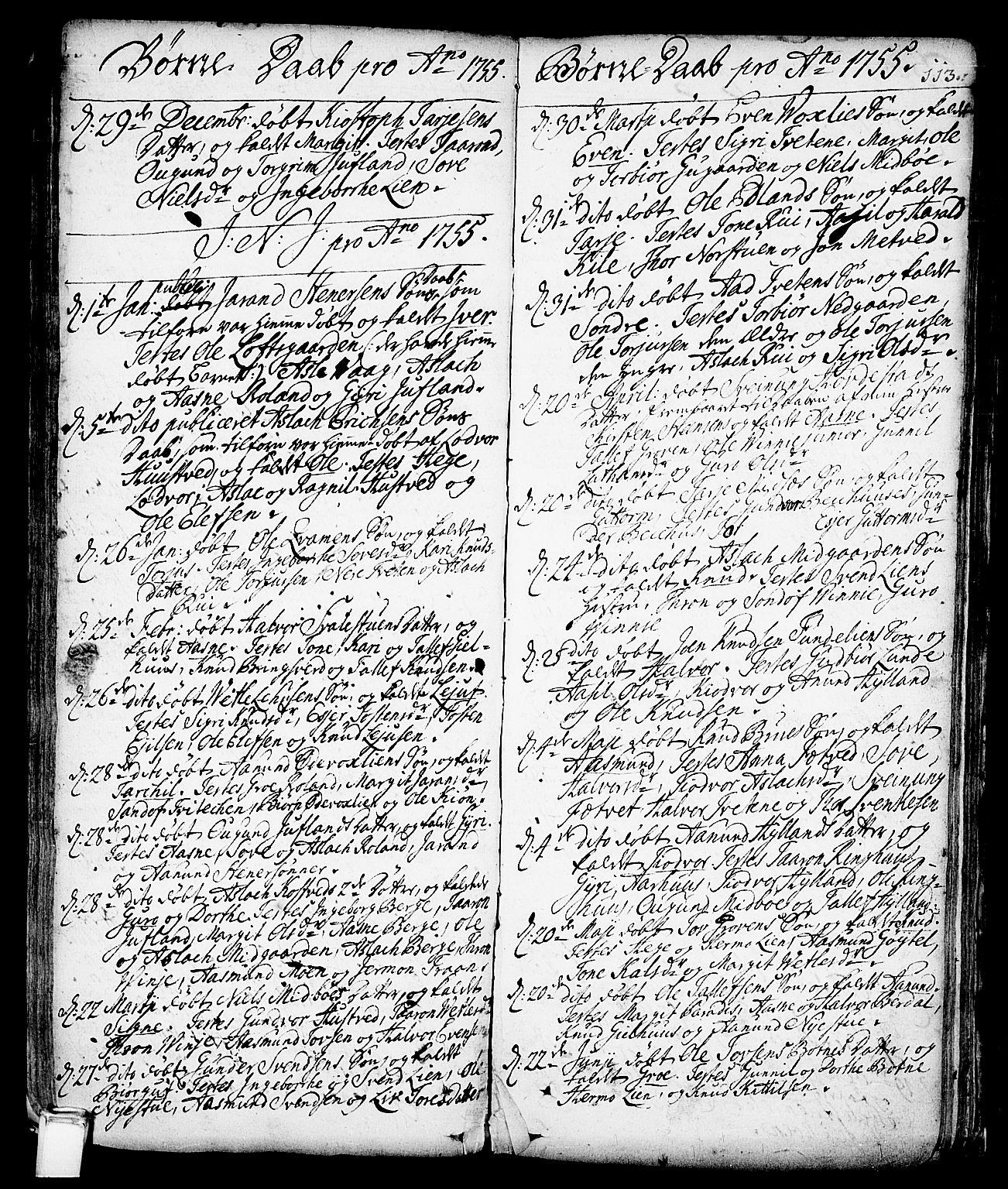 SAKO, Vinje kirkebøker, F/Fa/L0001: Ministerialbok nr. I 1, 1717-1766, s. 113