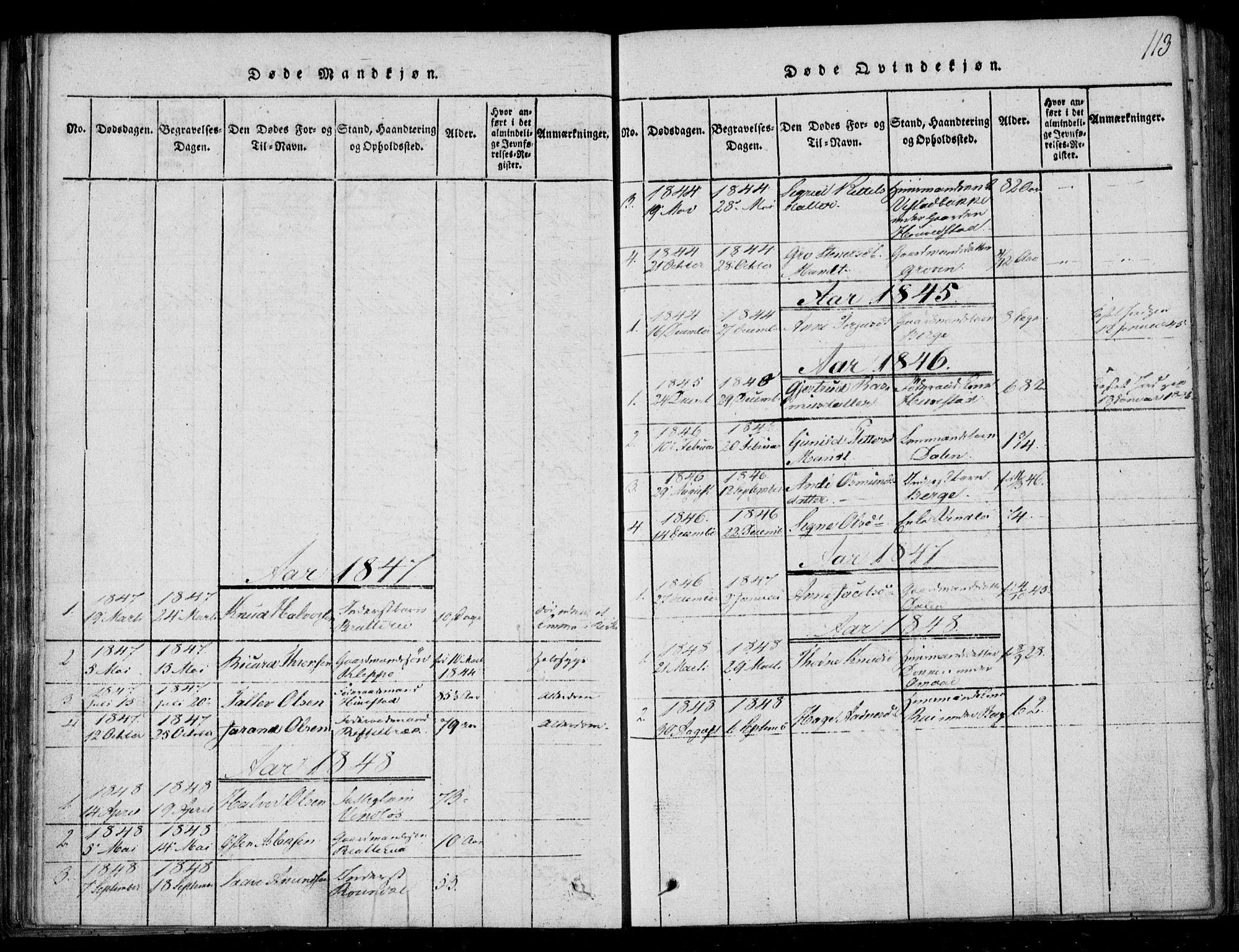 SAKO, Lårdal kirkebøker, F/Fb/L0001: Ministerialbok nr. II 1, 1815-1860, s. 113
