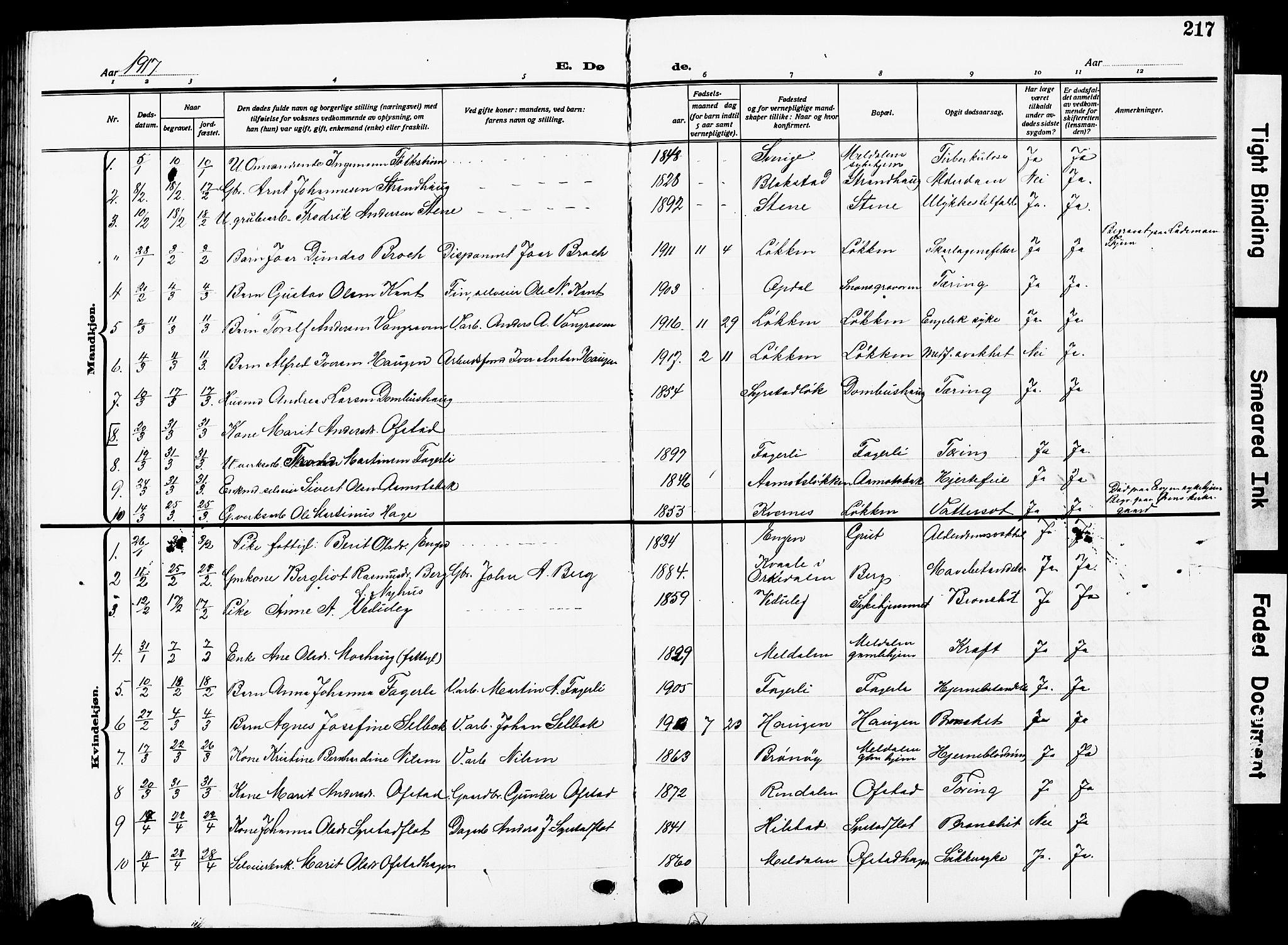 SAT, Ministerialprotokoller, klokkerbøker og fødselsregistre - Sør-Trøndelag, 672/L0865: Klokkerbok nr. 672C04, 1914-1928, s. 217